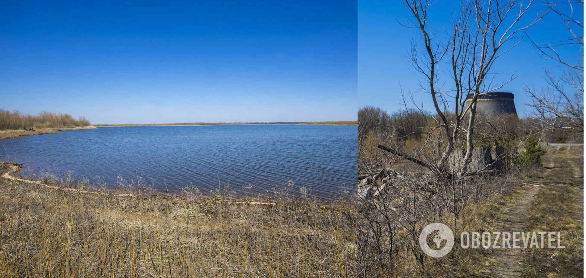 Вода в пруде отступила на десятки и сотни метров от прежней береговой линии