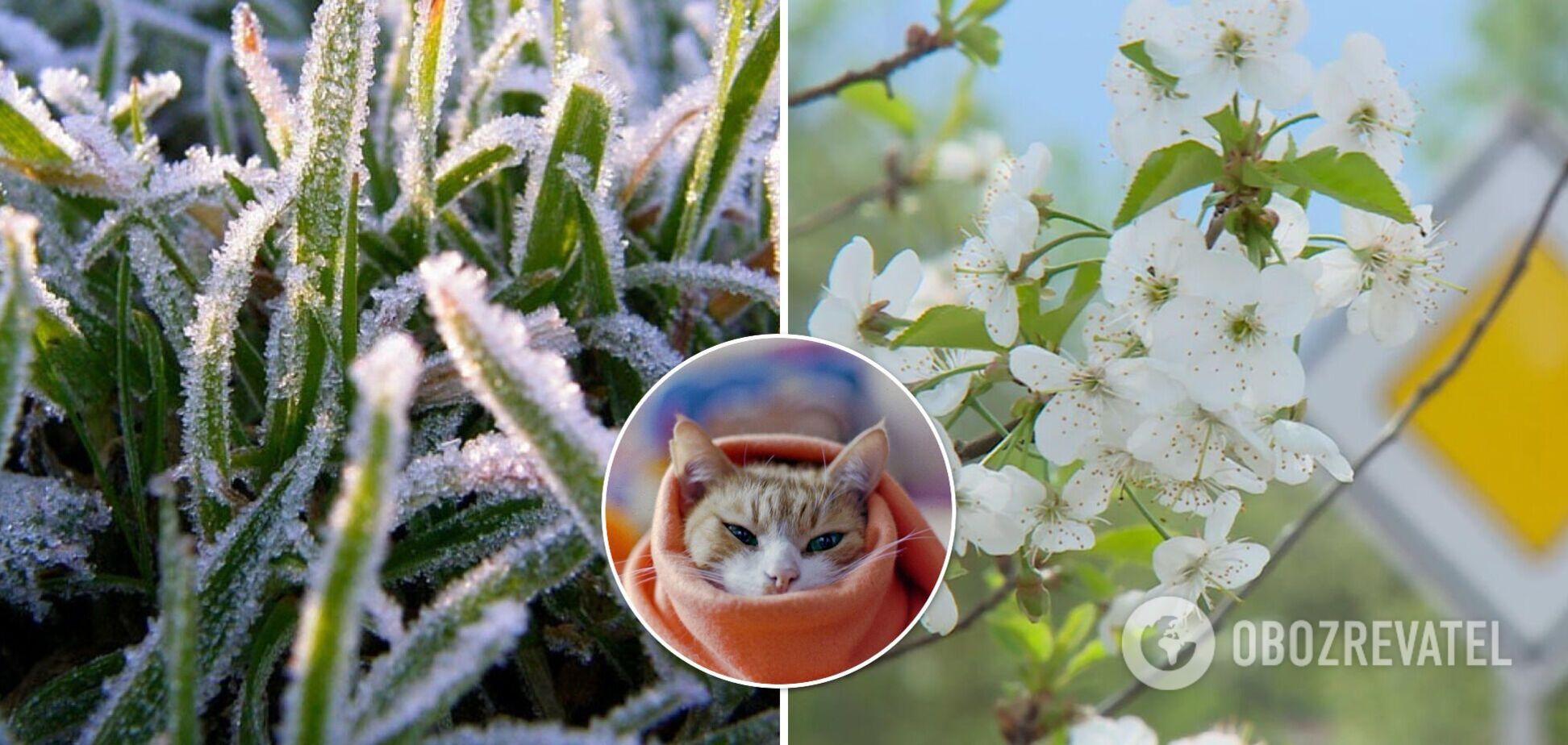 Наприкінці травня в Україну можуть прийти заморозки й похолодання: як зміниться погода