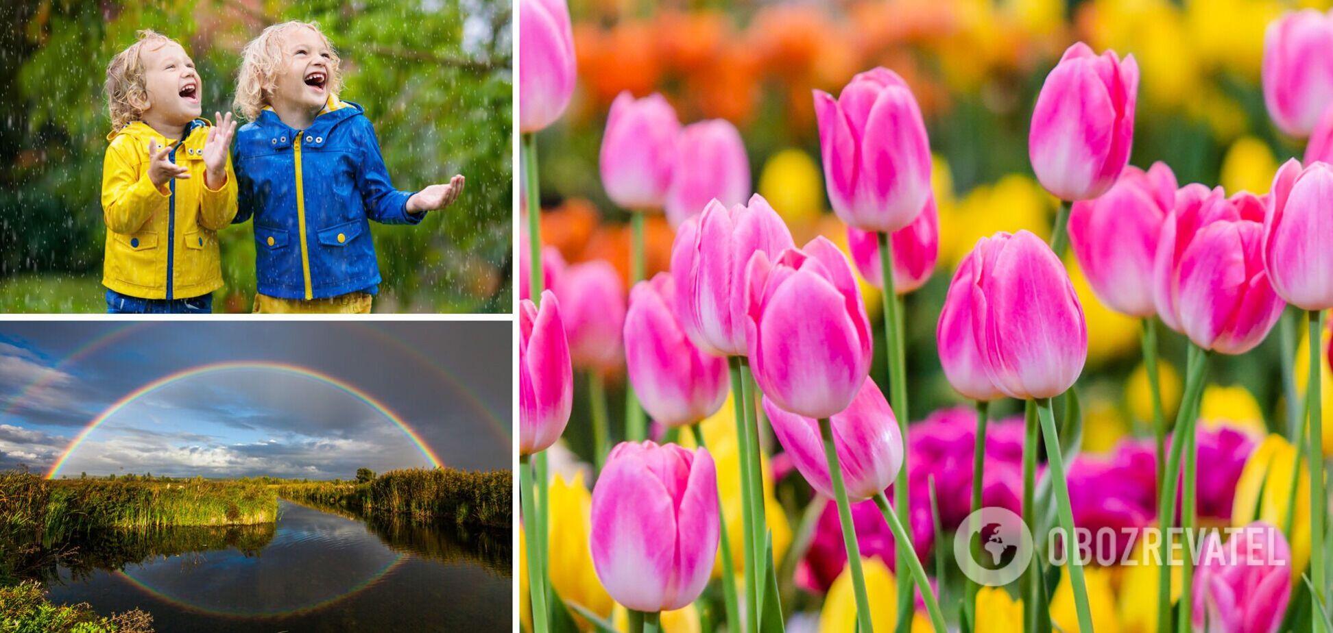 Після потепління Україну накриють дощі і грози: синоптики уточнили прогноз погоди до кінця травня
