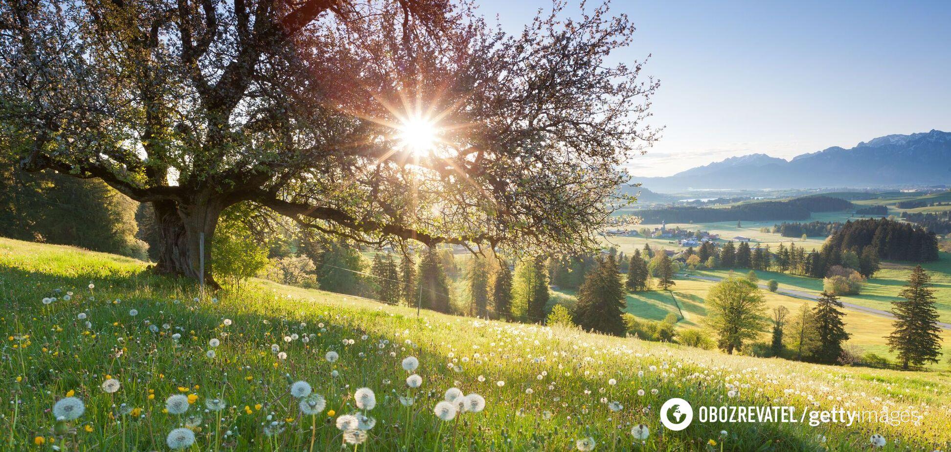 Погода с 17 мая в Украине будет прохладной