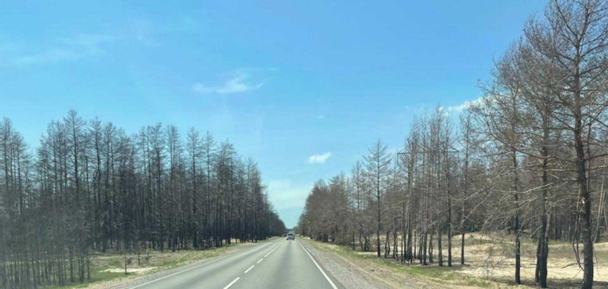 'Велике будівництво' на Луганщині оновить у 4 рази більше доріг, ніж за останні 10 років, – Кубраков