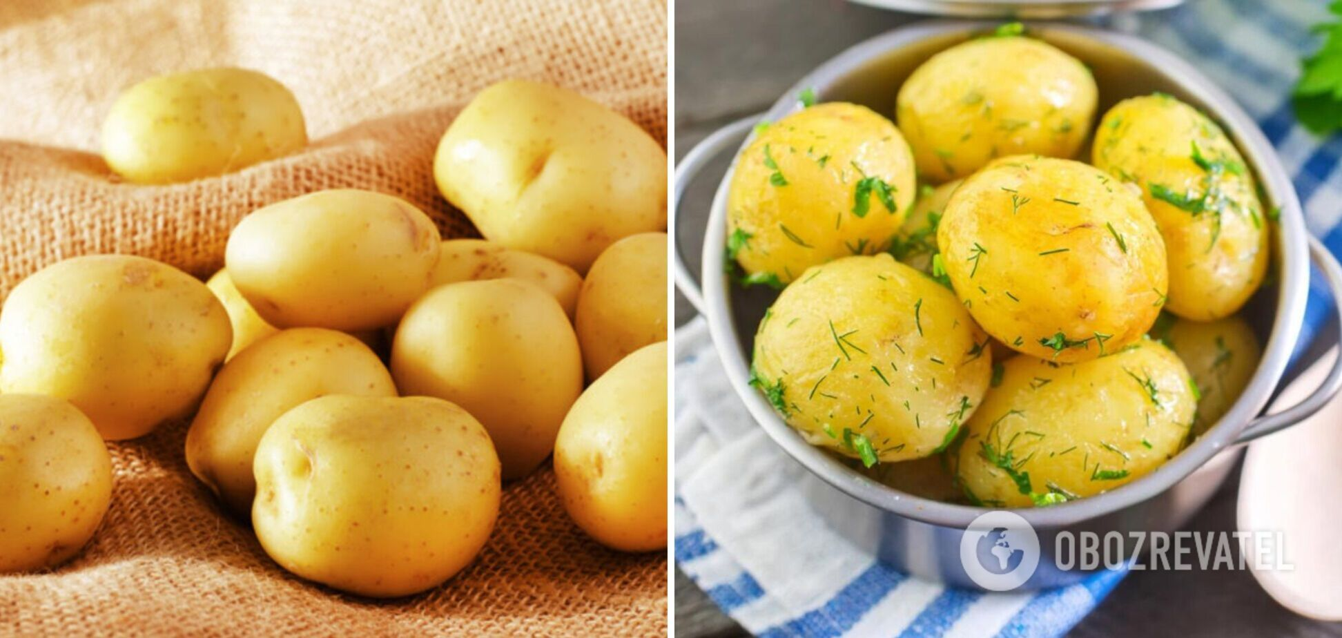 Полезный картофель для фигуры: какие ценные вещества содержит овощ
