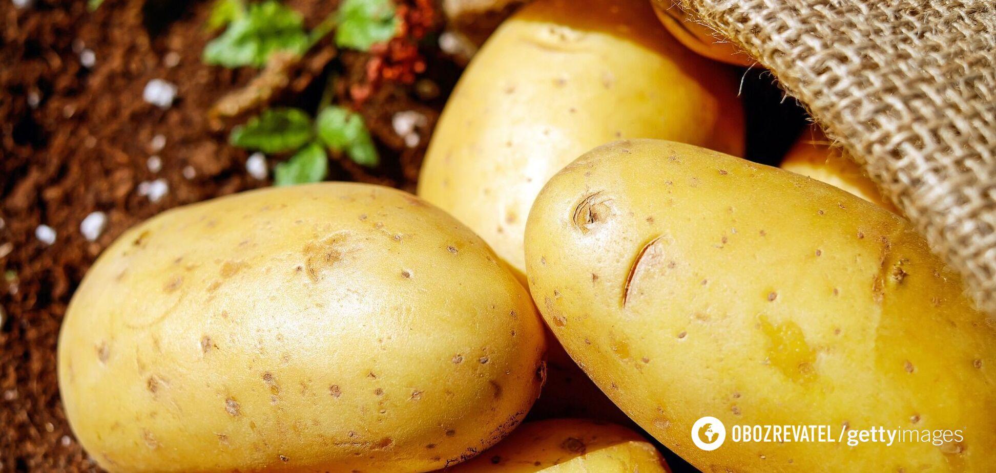 Цены на картофель