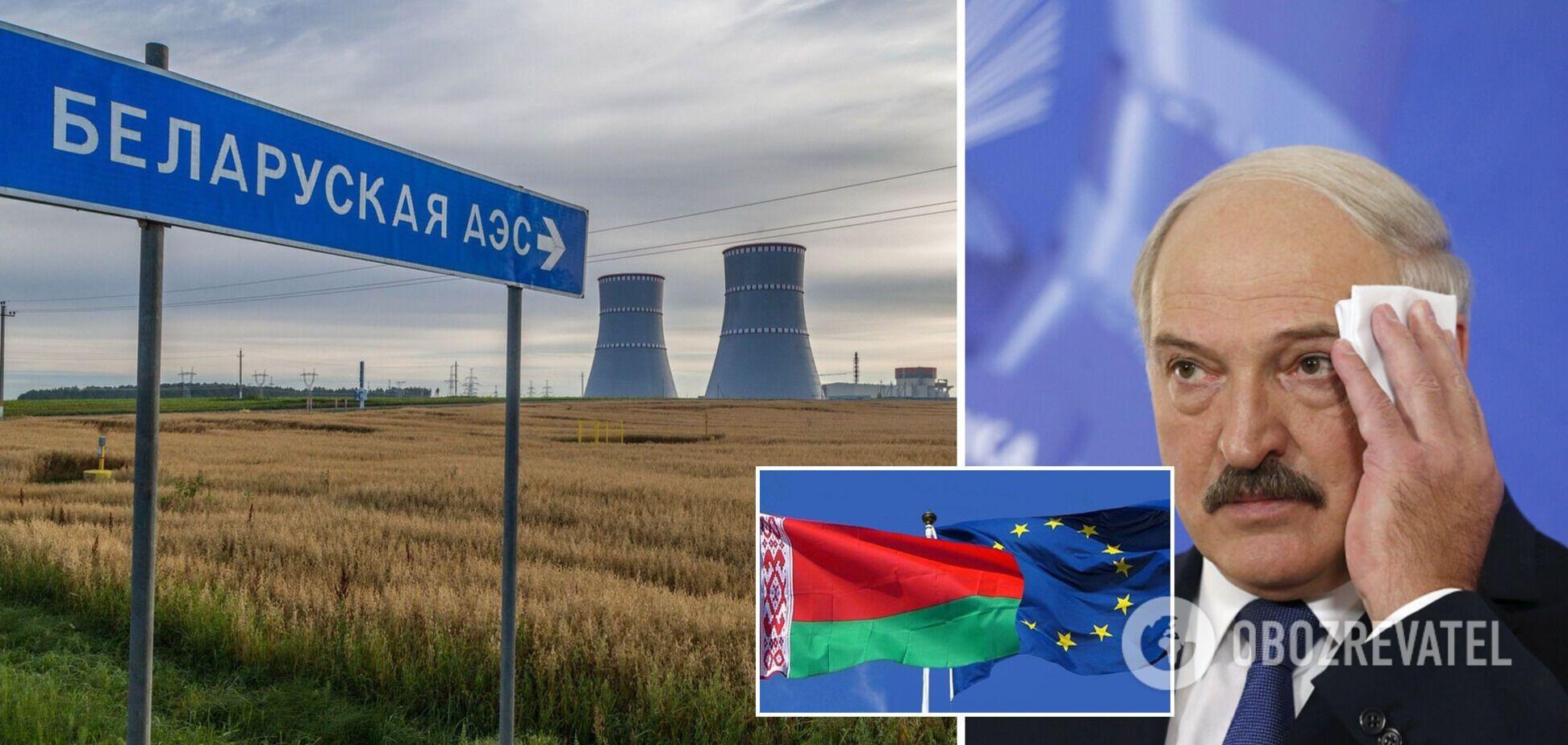 Литва призвала ввести санкции против компаний, строящих АЭС Беларуси