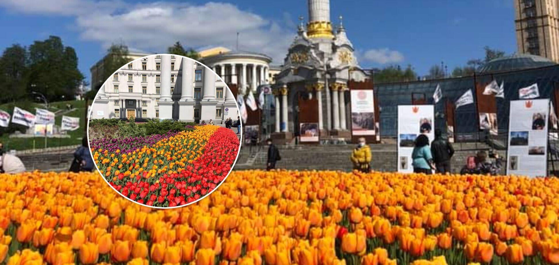 У центрі Києва розквітло 100 тисяч тюльпанів. Фото