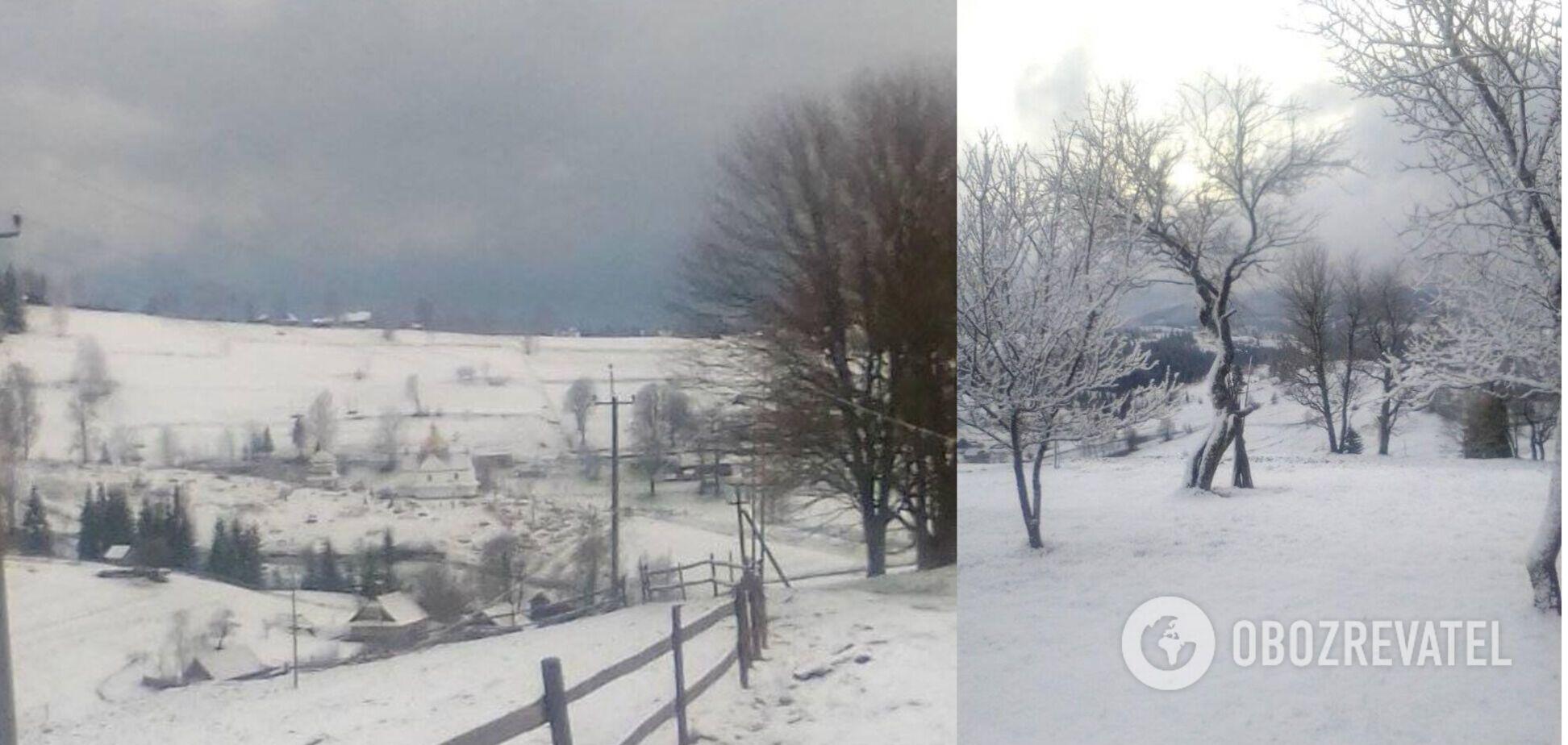 У Карпатах у розпал весни випало майже 20 см снігу. Фото