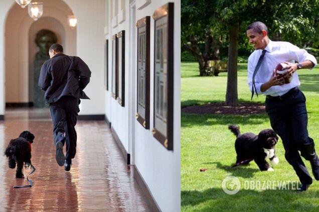 Обама растрогал сеть сообщением об умершем собаке