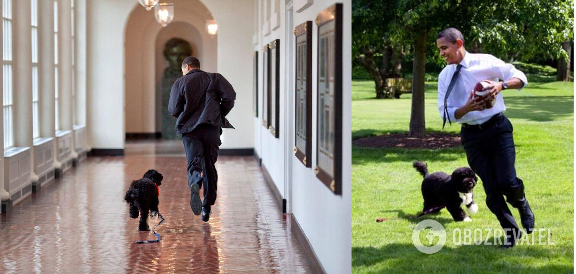 Обама розчулив мережу дописом про померлого собаку