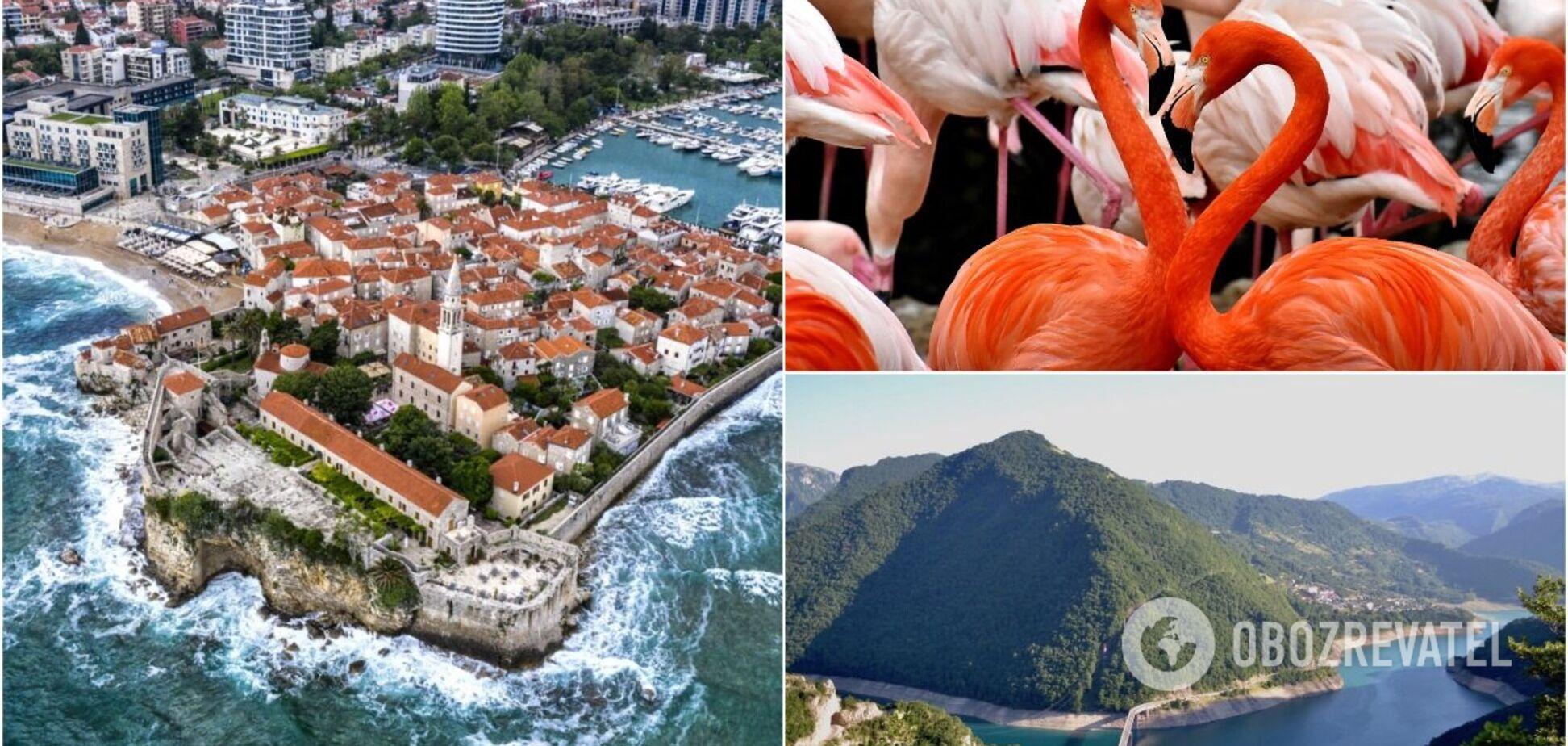15 дивовижних фактів про Чорногорію, які покажуть країну з іншого боку