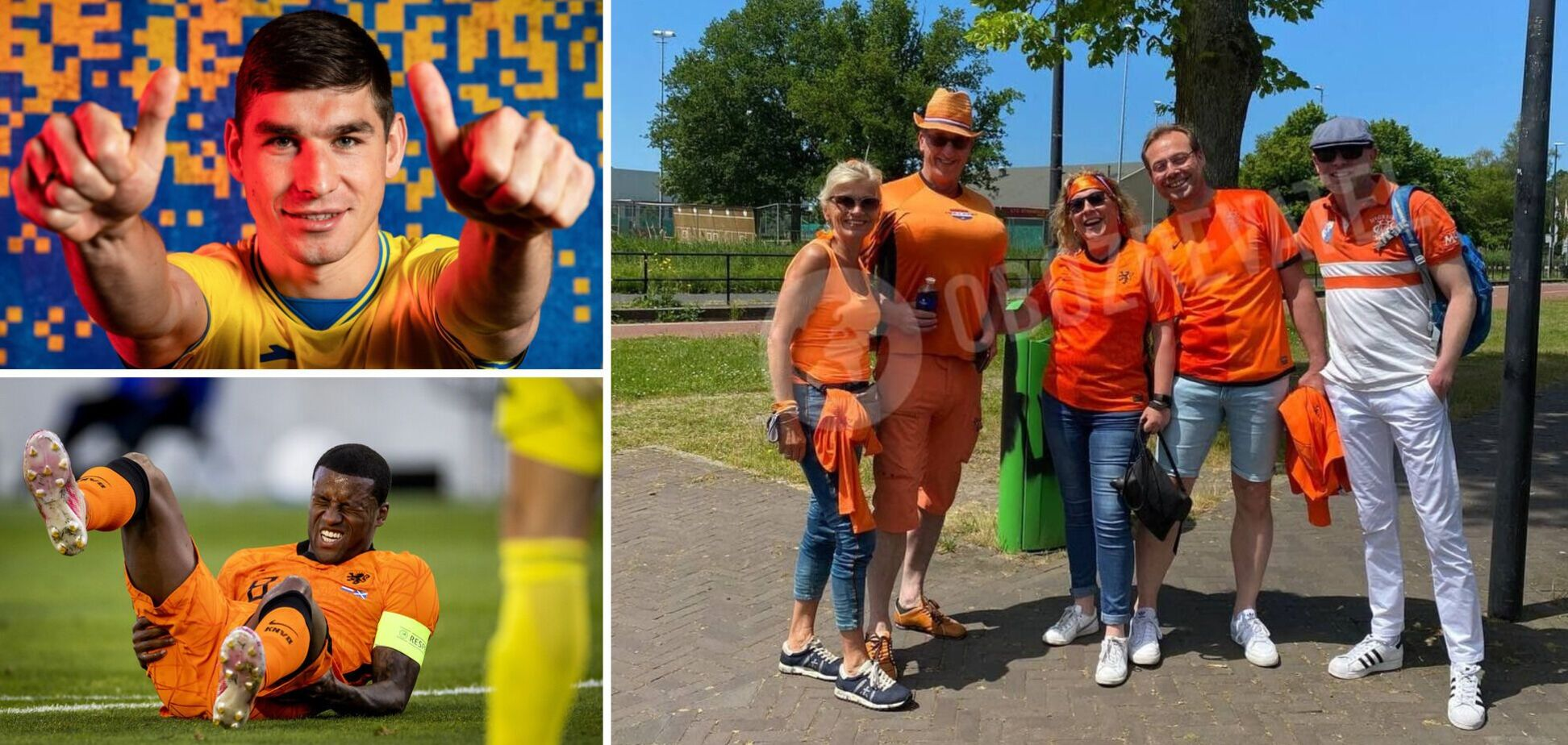 Нидерланды Украина