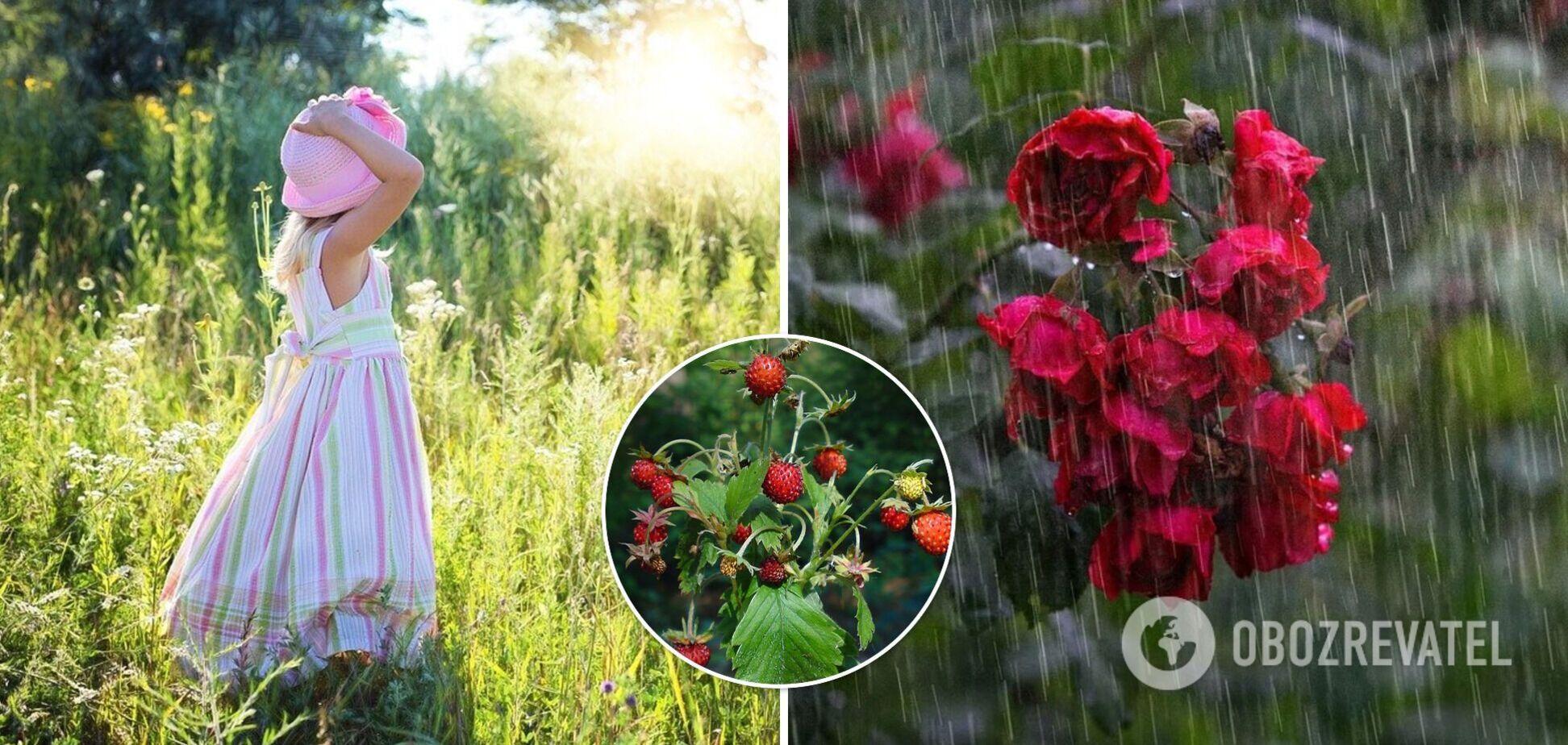 На заході справжня спека, на сході – дощі з грозами: погода в Україні на 17 червня