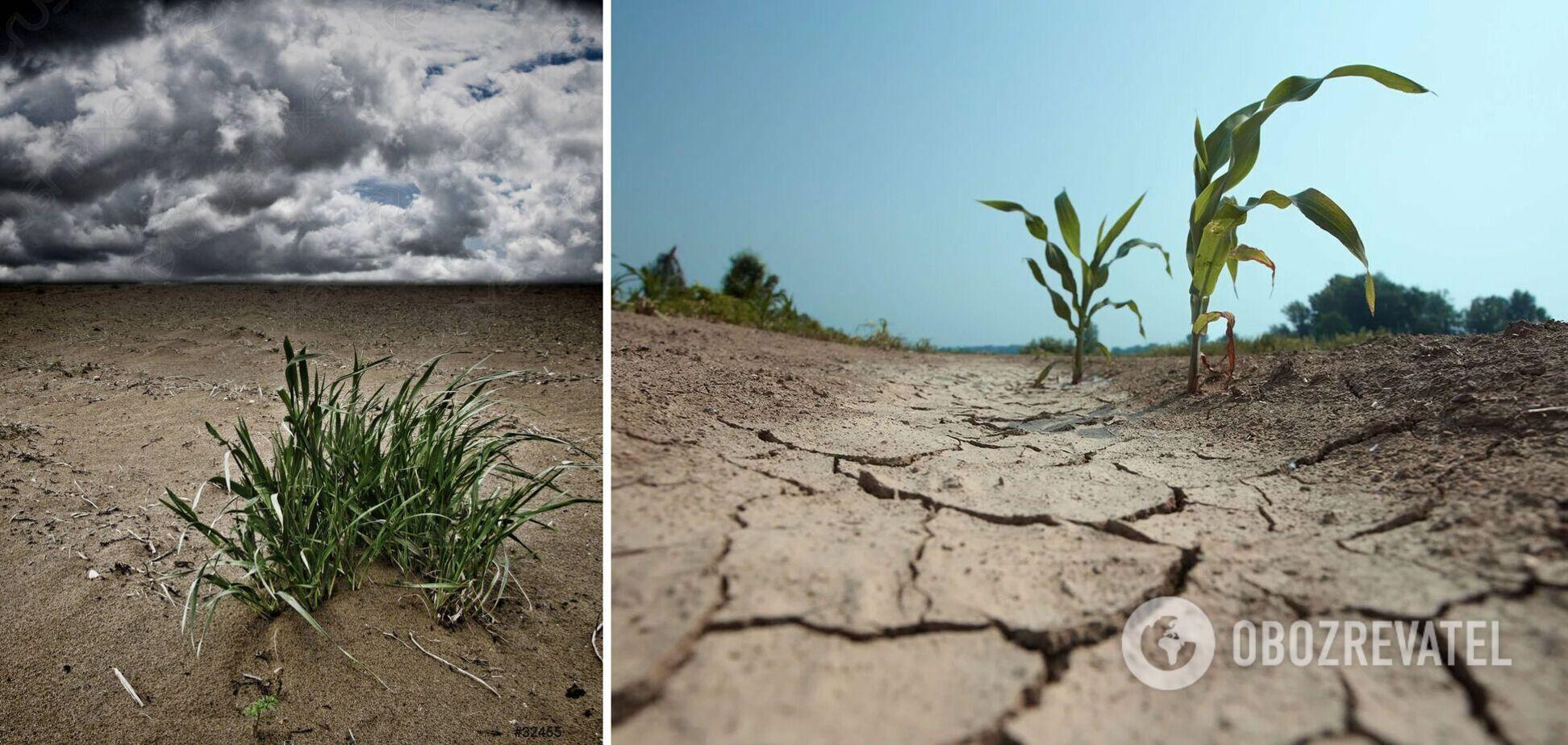 Країні загрожує опустелювання великих територій