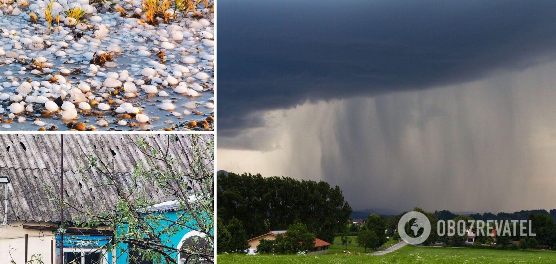 Погода Кубань