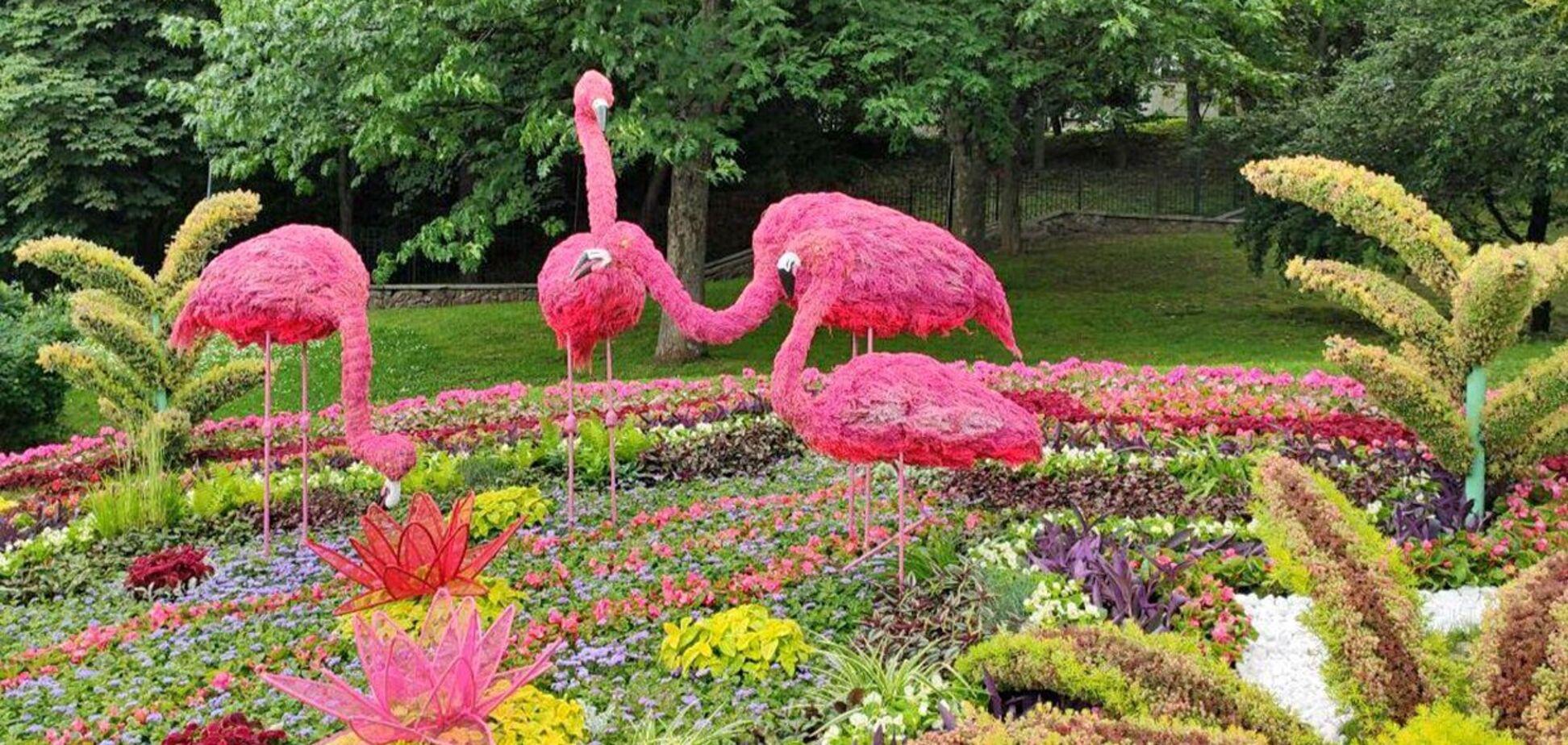 В Киеве на Певческом поле 'поселились' огромные животные сделанные из цветов. Фото
