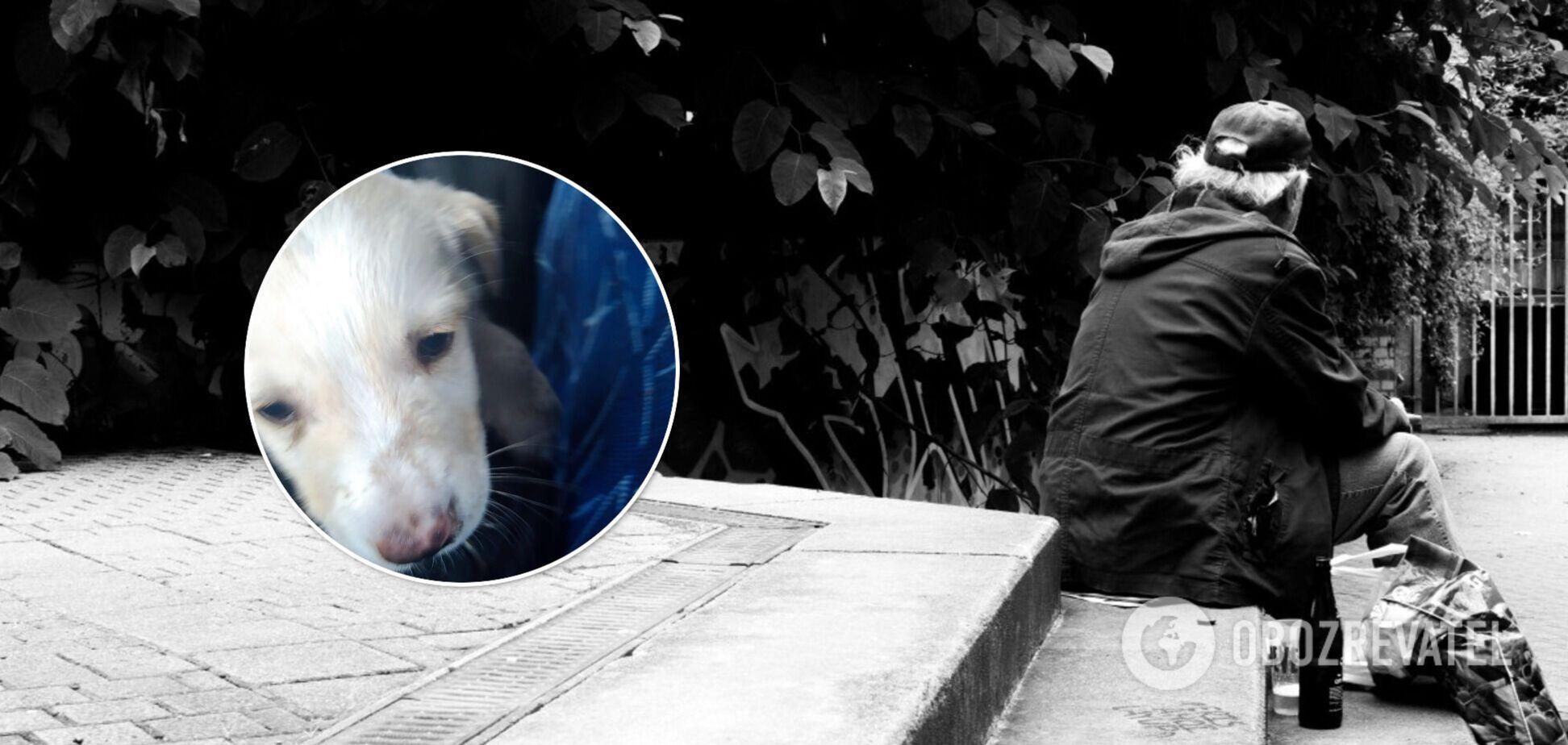 В Киеве бездомный-зоофил насилует щенков: волонтеры попросили о помощи
