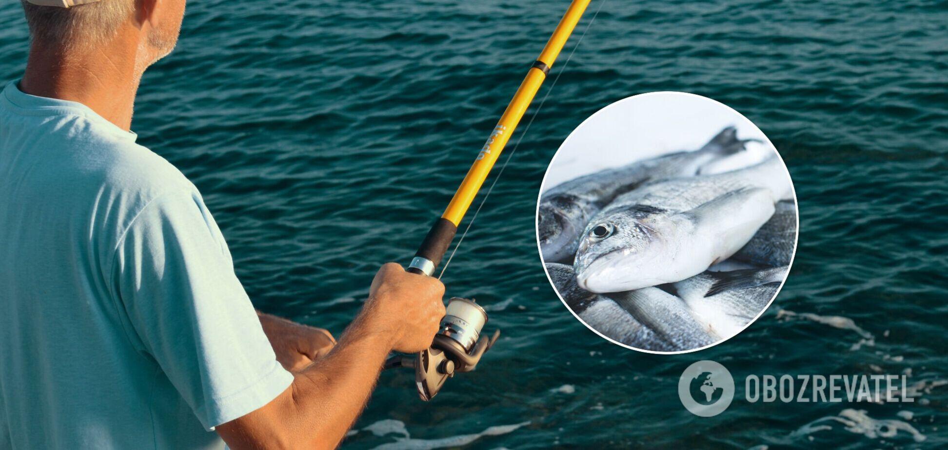 День рыбака ежегодно приходится навторое воскресенье июля