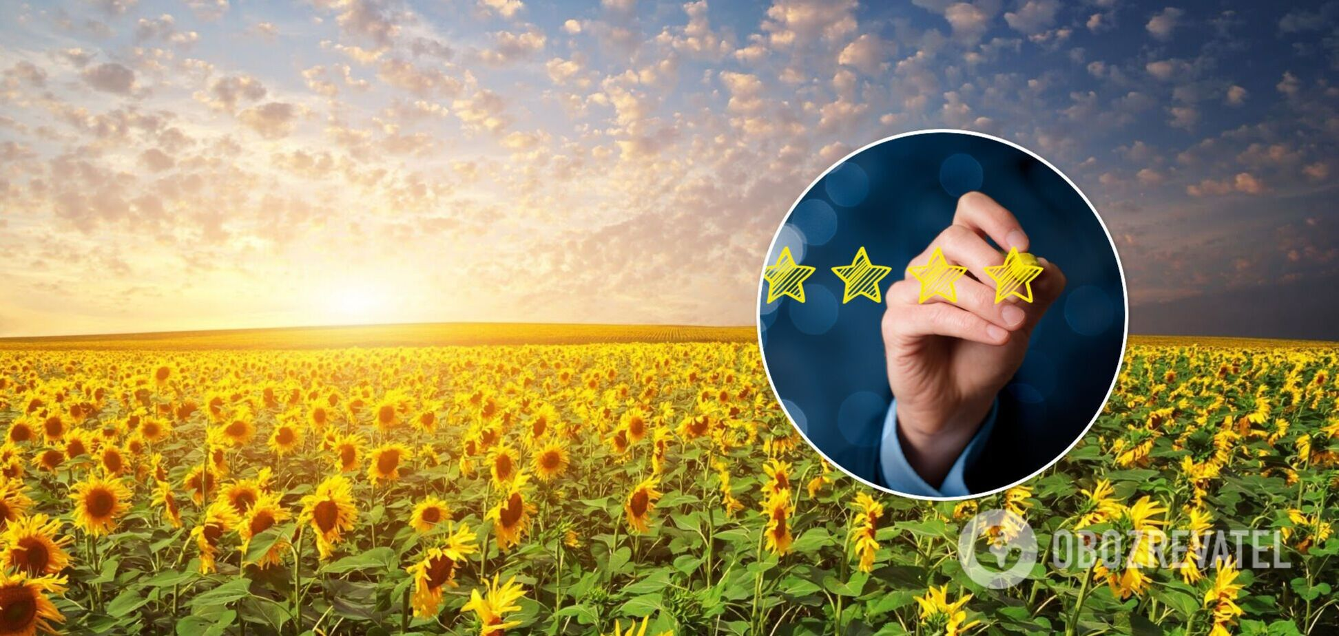 Минрегион определился с пятеркой лидеров рейтинга социально-экономического развития
