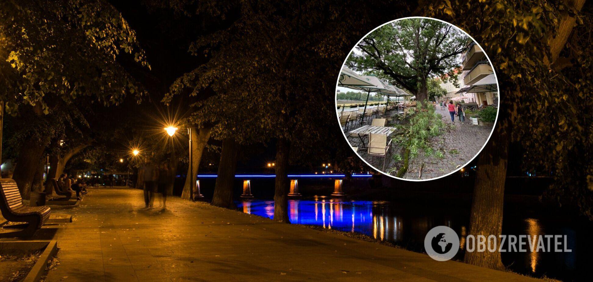 В Ужгороді величезна гілка дерева впала на відвідувачів кафе. Момент потрапив на відео