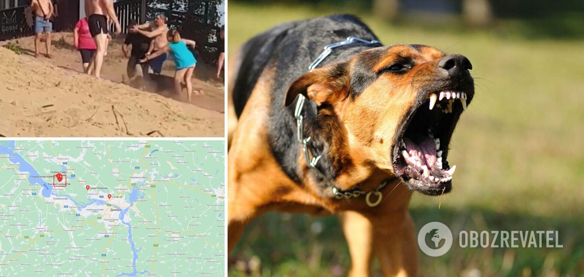 Под Днепром на пляже охранник спустил собаку на отдыхающего. Видео 18+