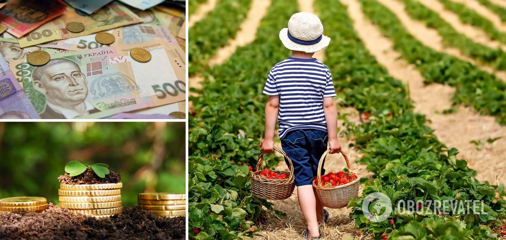 Власників городів змусять платити податки