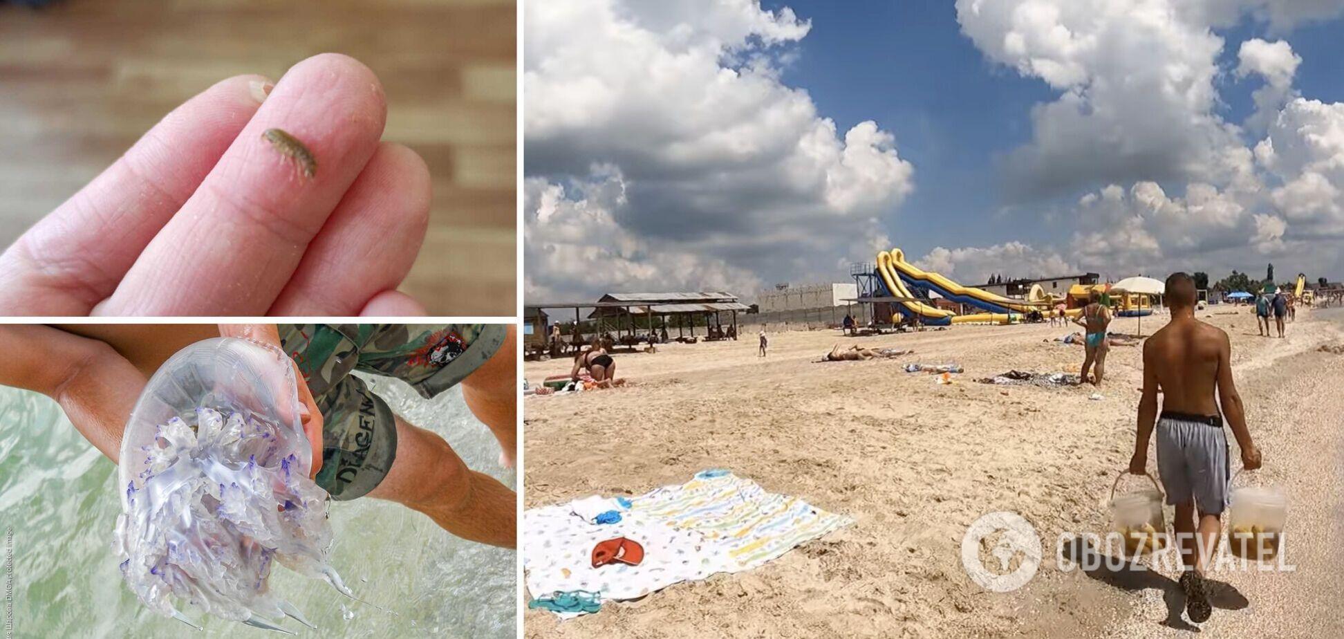 Туристи скаржаться на медуз, морських бліх і шахраїв