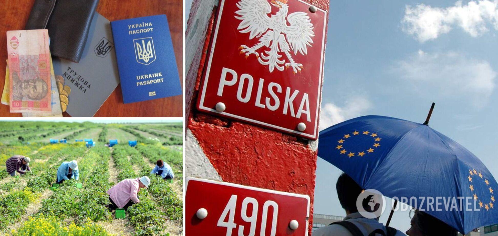 Украинских заробитчан зовут в Польшу