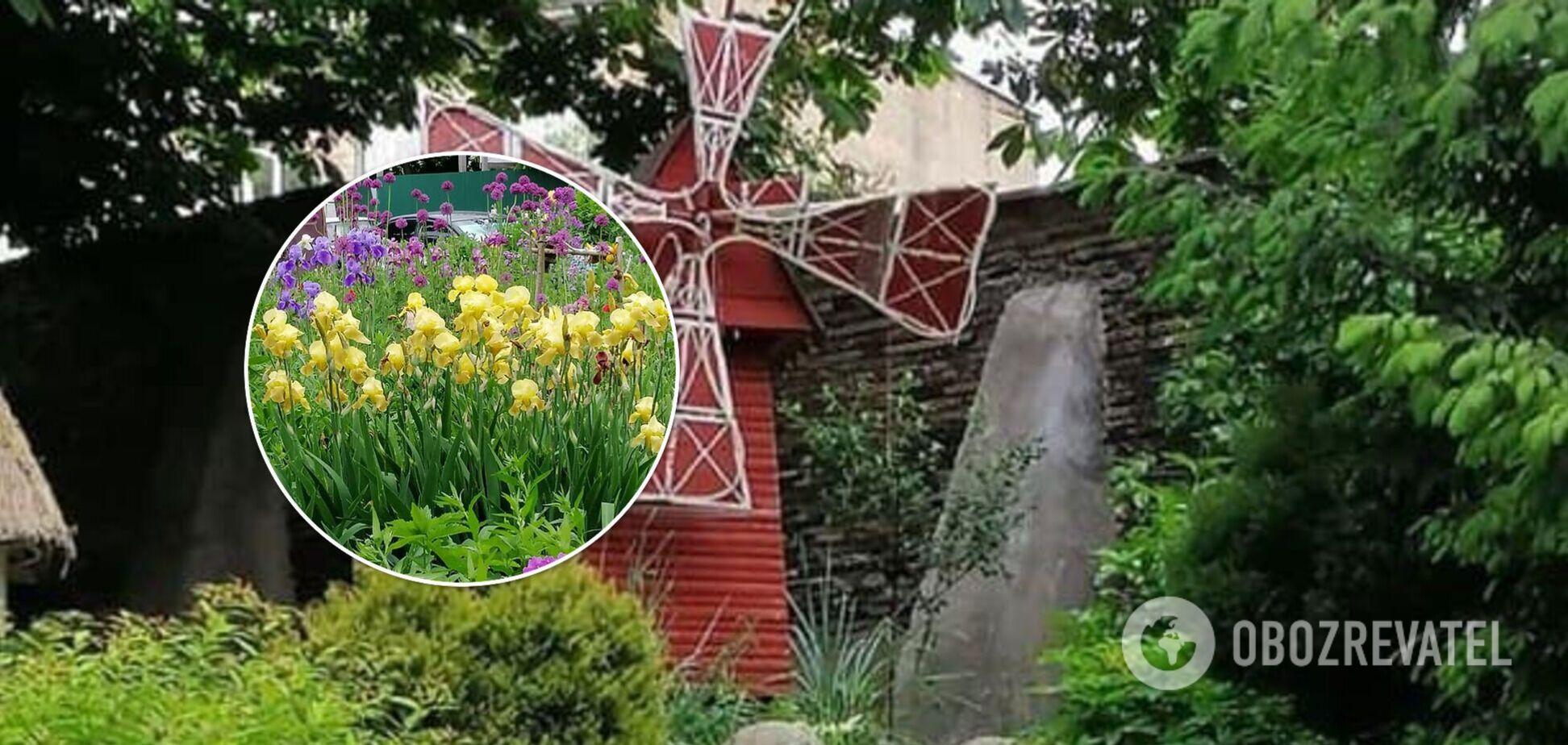 У Києві жінка перетворила двір на Печерську в прекрасний сад