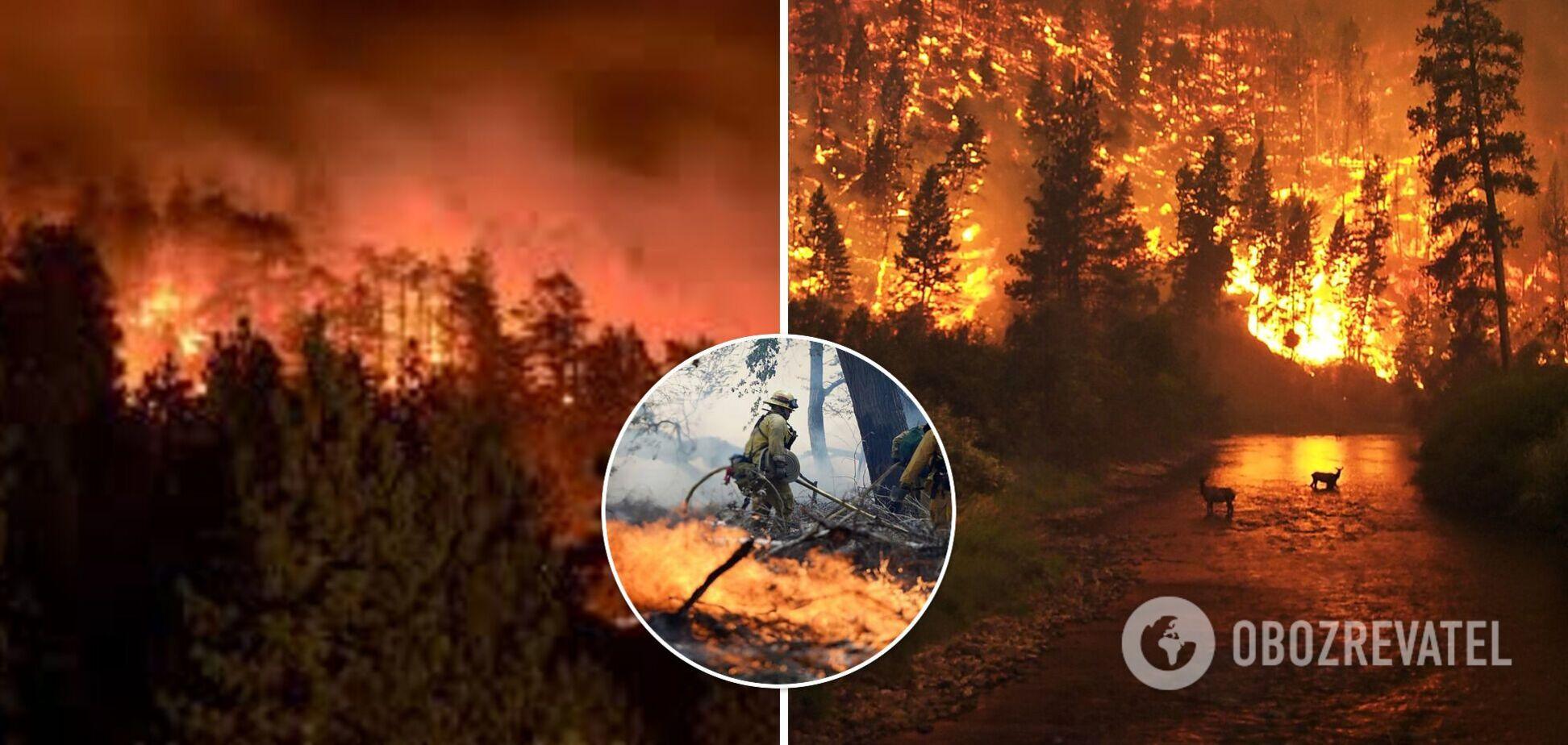 В России вспыхнули масштабные лесные пожары, небо окрасилось в красный цвет. Видео