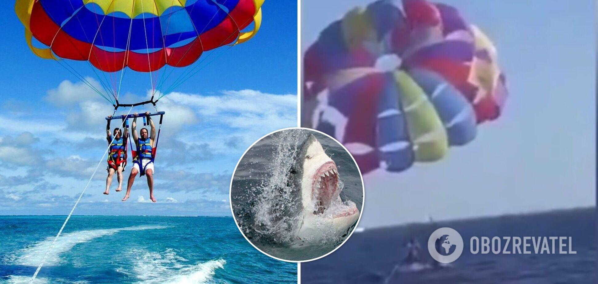 На курорте Красного моря акула выпрыгнула из воды и откусила пятку парапланеристу. Видео момента