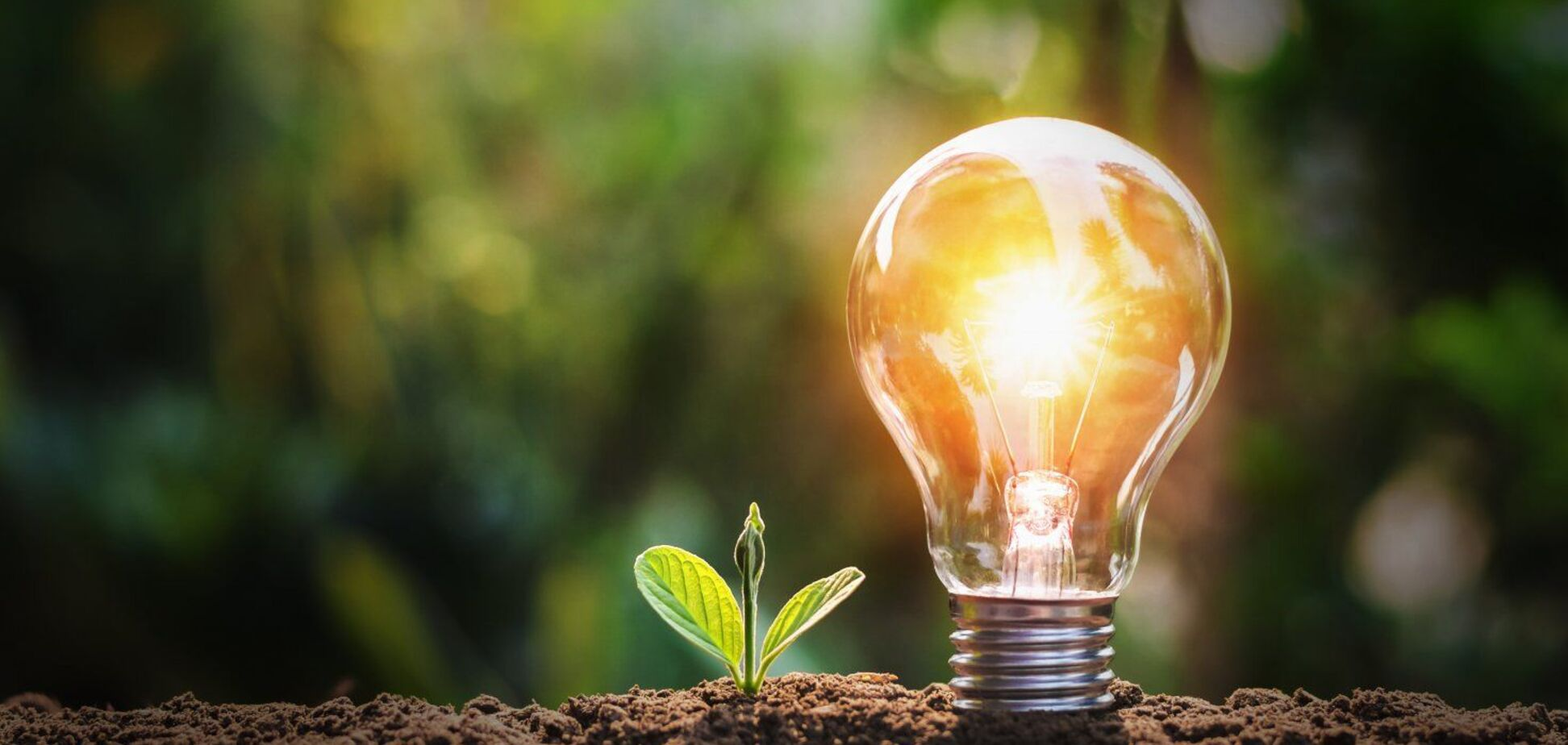Новым акцизом на 'зеленую' энергию правительство дает сигнал инвесторам уходить из Украины - УБЭА