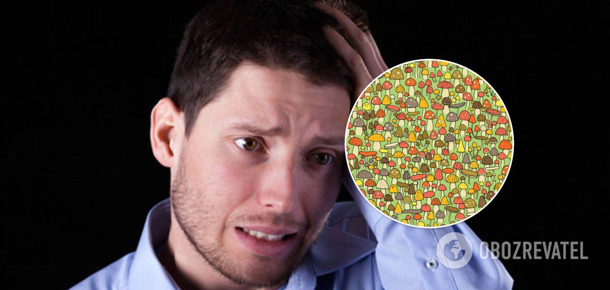 Картинка с мышкой среди грибов 'сломала' мозг пользователям в сети