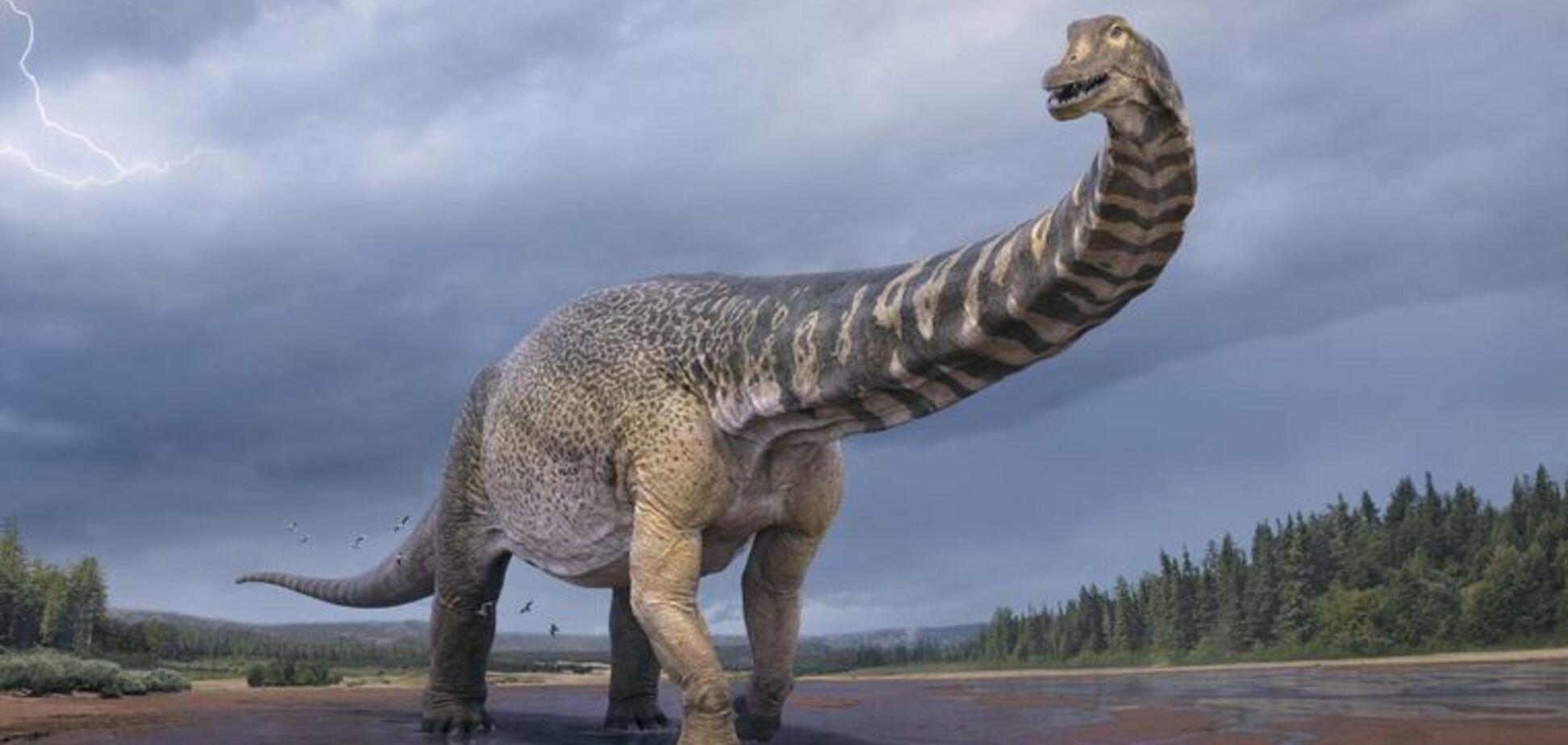 В Австралії знайшли динозавра розміром з будинок