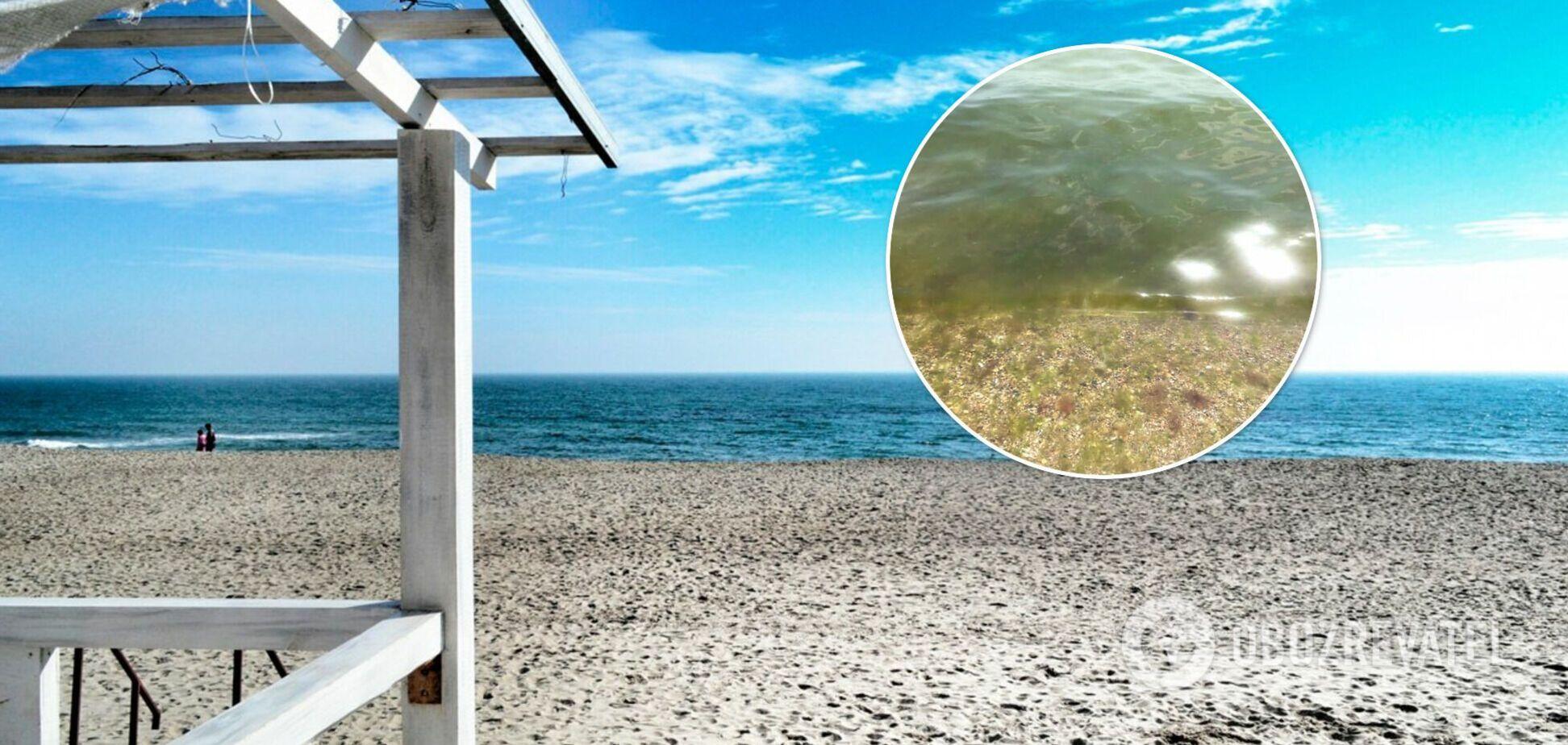 В Одесі море змінило колір і перетворилося на 'кашу'. Відео