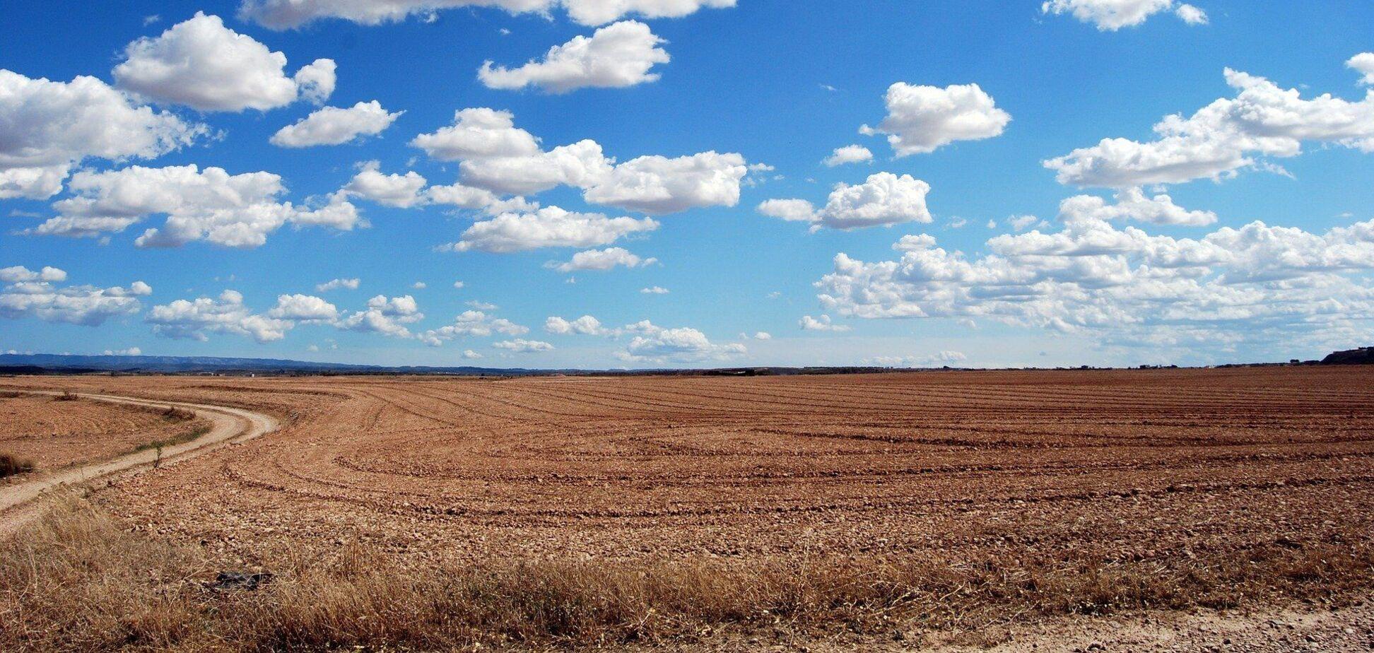 В Україні з дня відкриття ринку землі уклали 532 угоди
