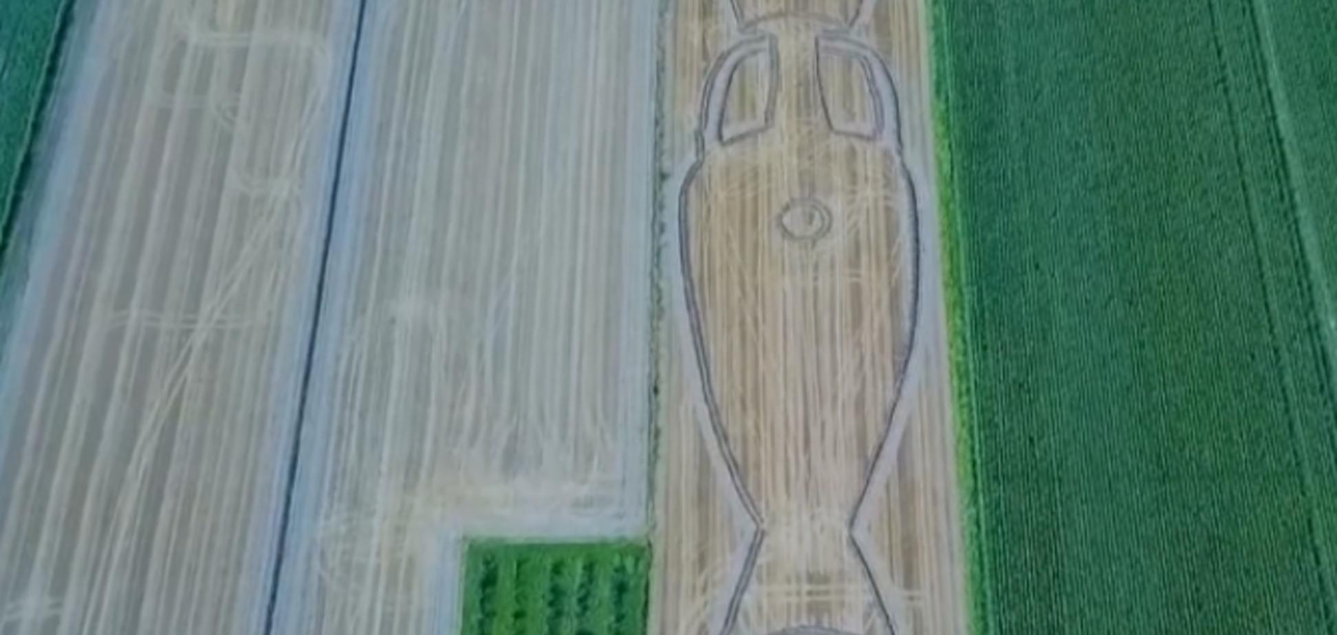 Художник превратил поле в гигантский кубок Евро-2020