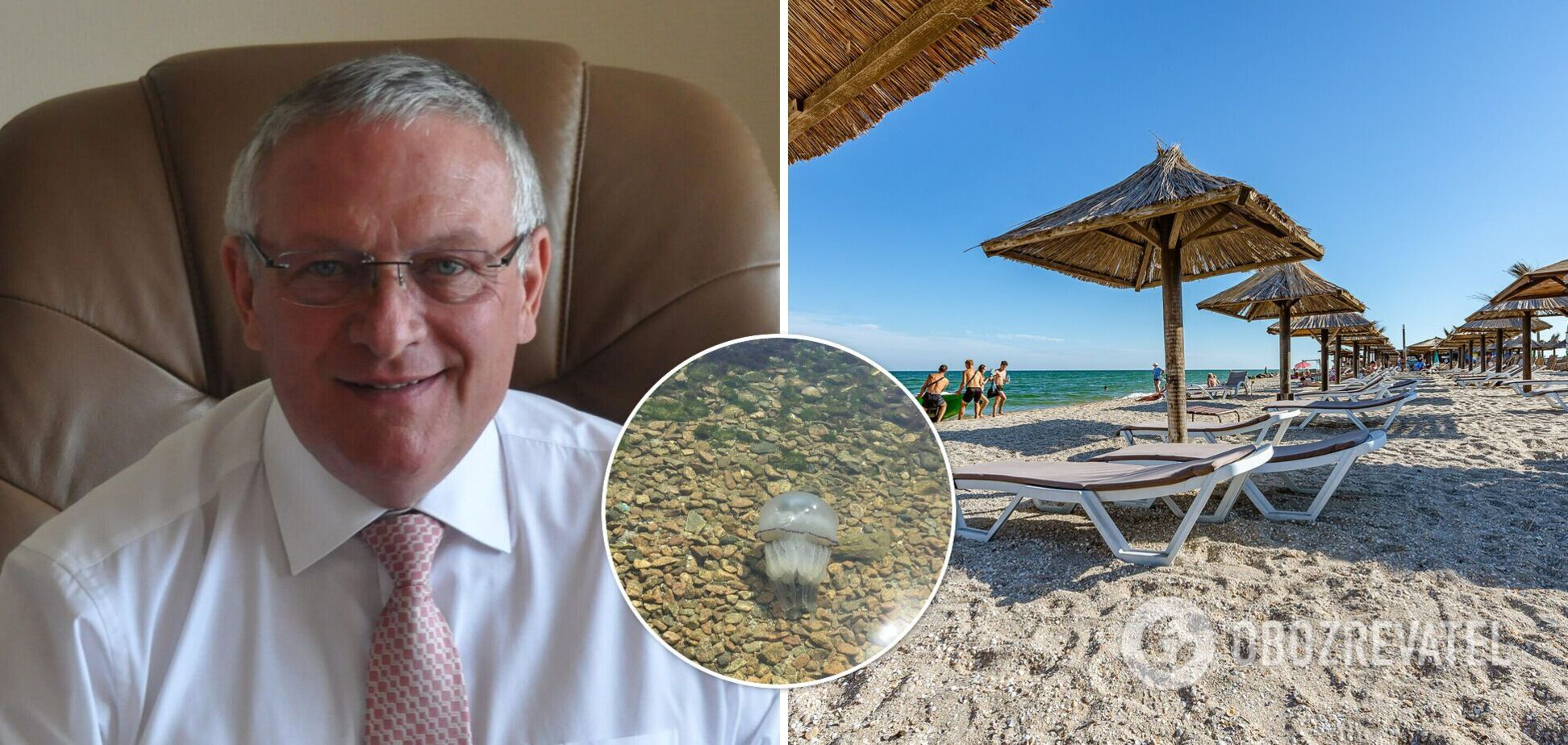 Мер Бердянська придумав, як вирішити проблему з навалою медуз: кидайте назад у море. Відео