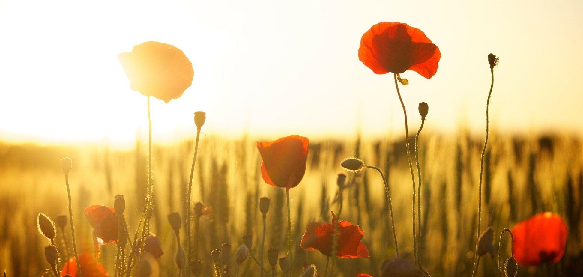 16 липня: свято, що не можна робити, прикмети й іменинники