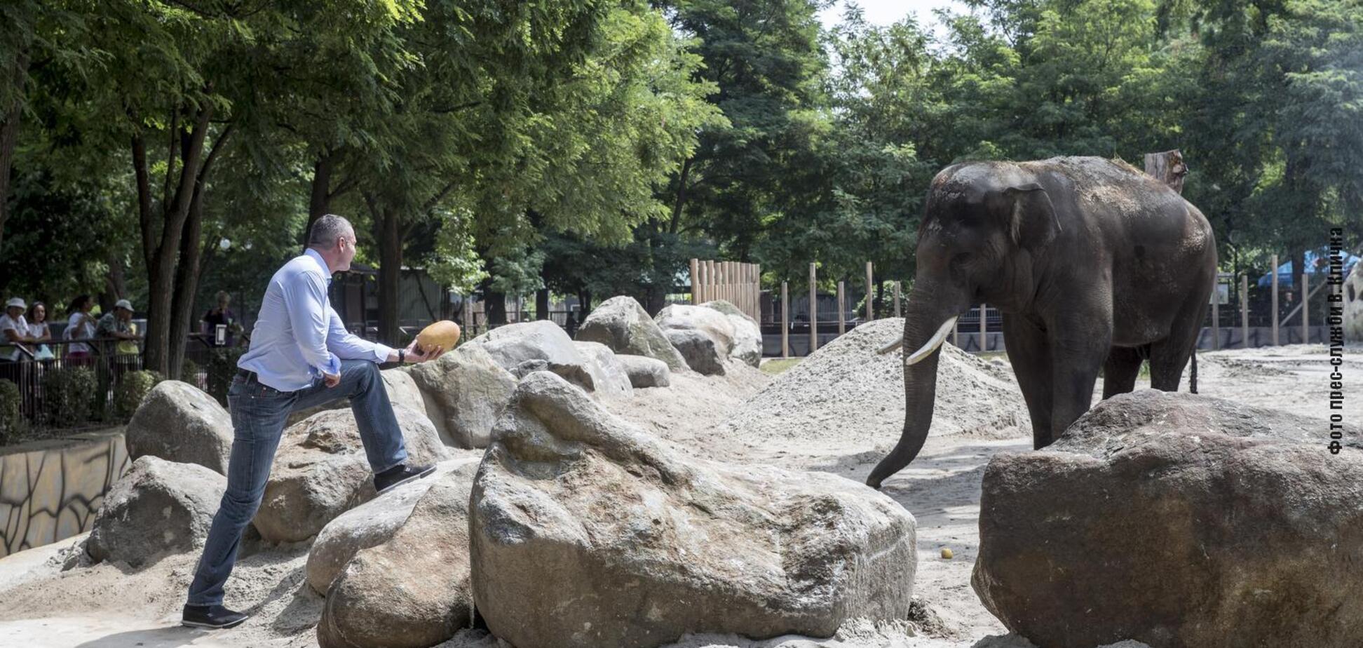 Виталий Кличко в Киевском зоопарке