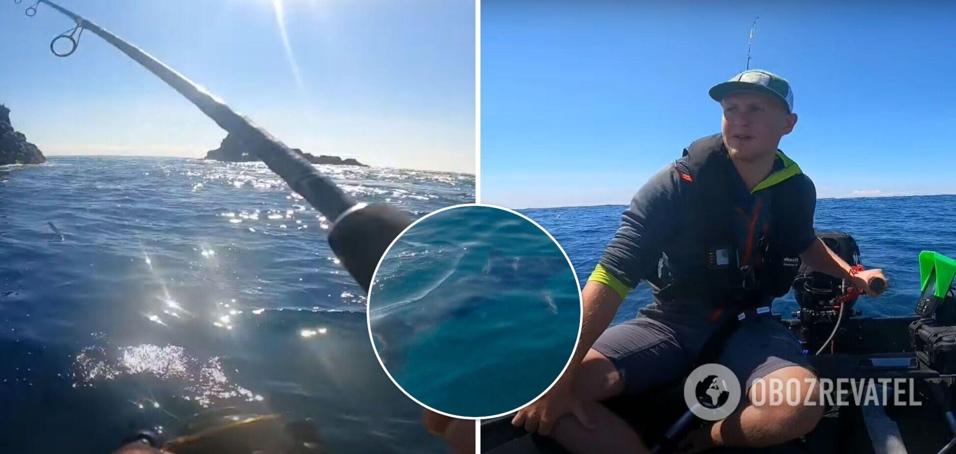 У Великобританії двометрова акула кружляла навколо рибалки на маленькому човні. Відео