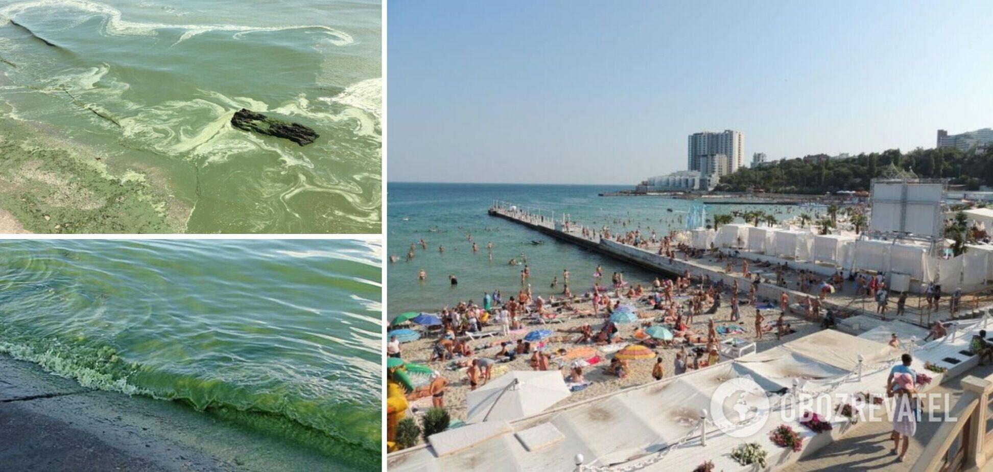 На популярном пляже в Одессе позеленело море: в чем опасность. Видео