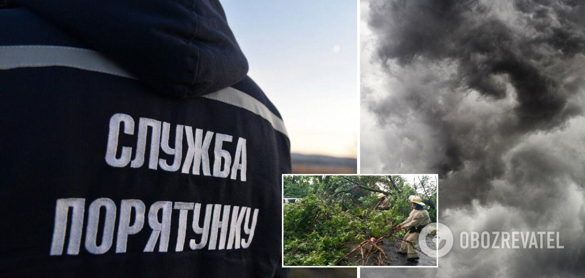 На Киевщине рухнувшие из-за урагана деревья убили двух человек