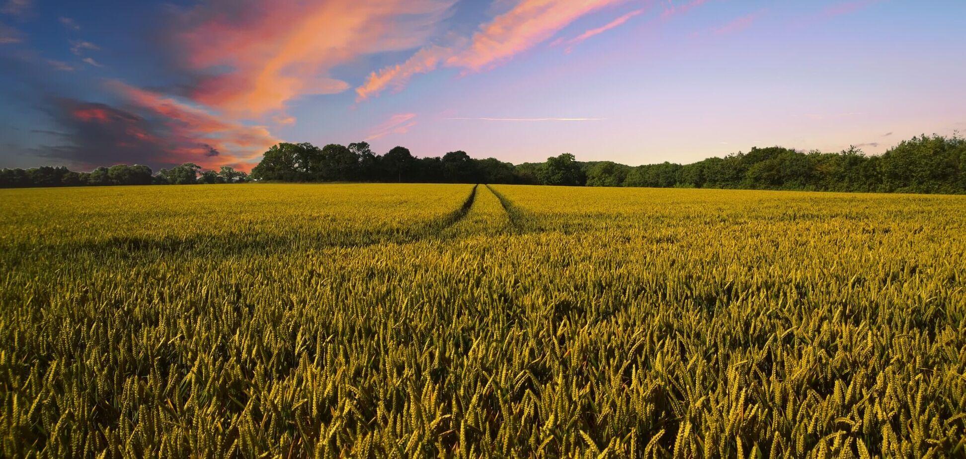 В Україні оформили 1107 земельних угод