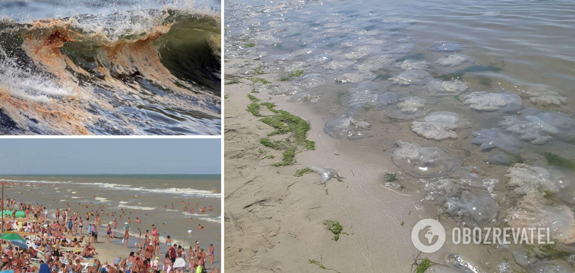 У Кирилівці брудне море, сотні медуз і натовпи туристів