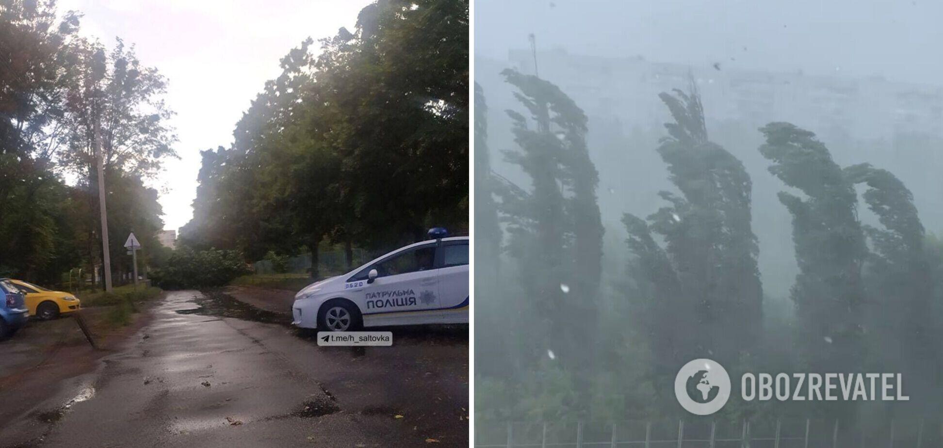 Харьков накрыл ураган: ветер валил деревья, а улицы ушли под воду. Видео