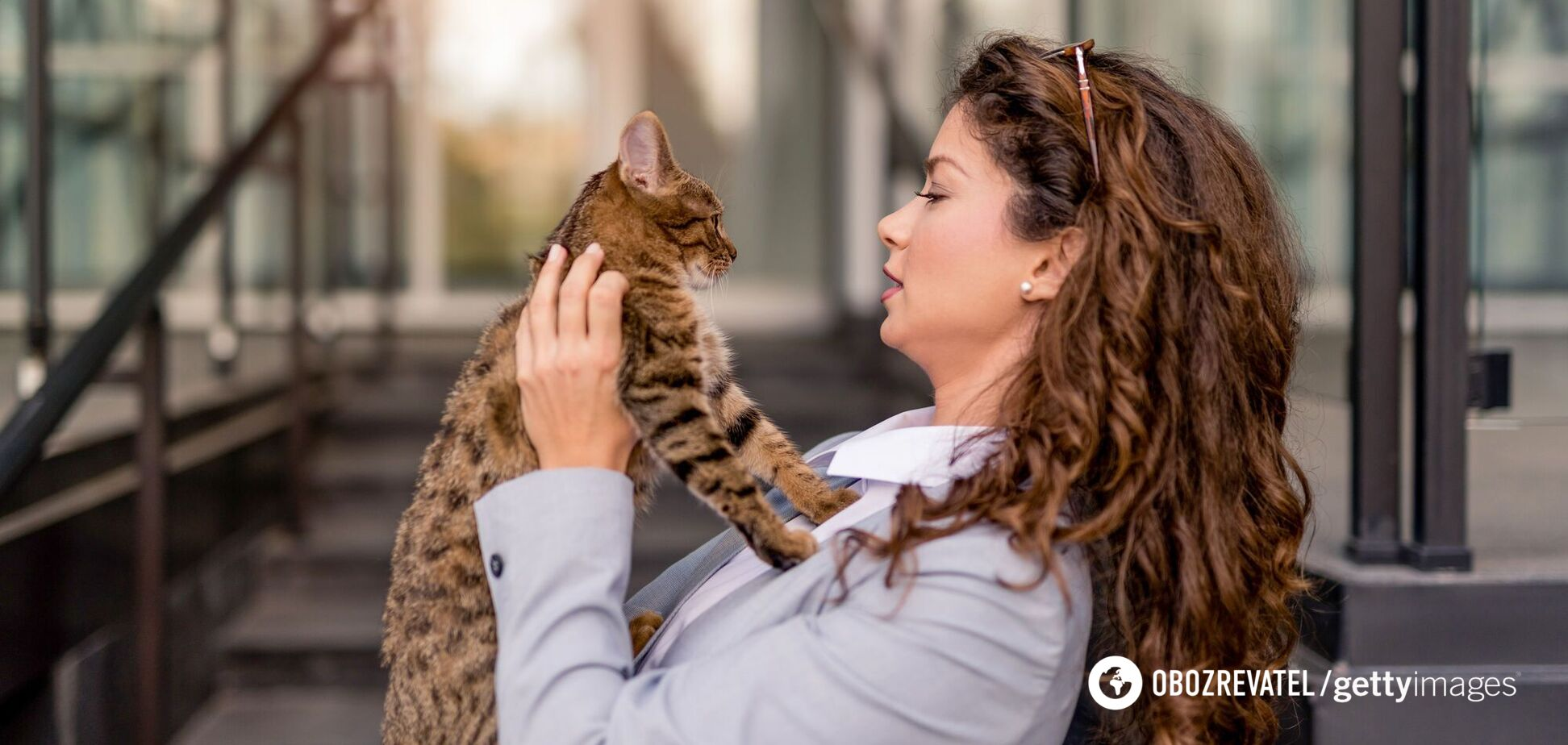 Кошки могут заразиться коронавирусом
