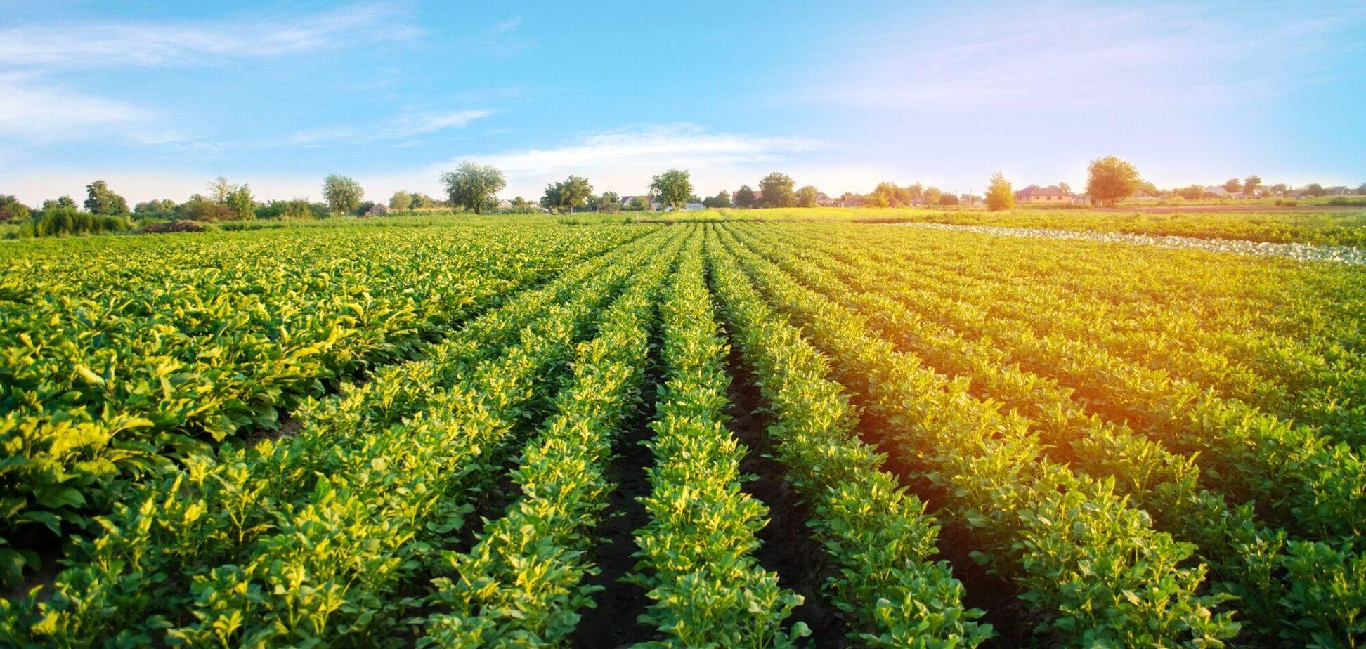 В Україні стартував продаж землі