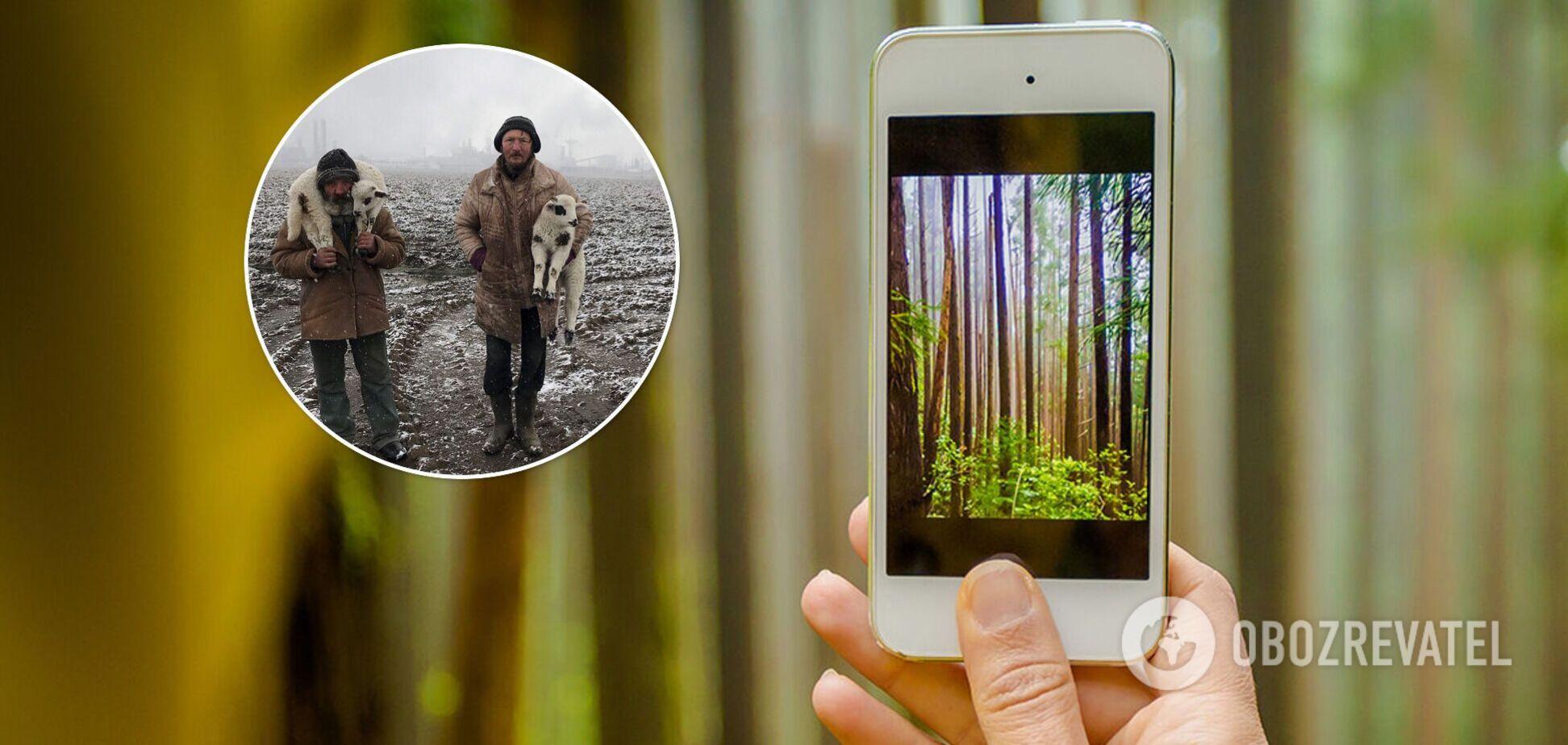 Найкращі знімки року, зроблені на iPhone: оголошено переможців фотоконкурсу