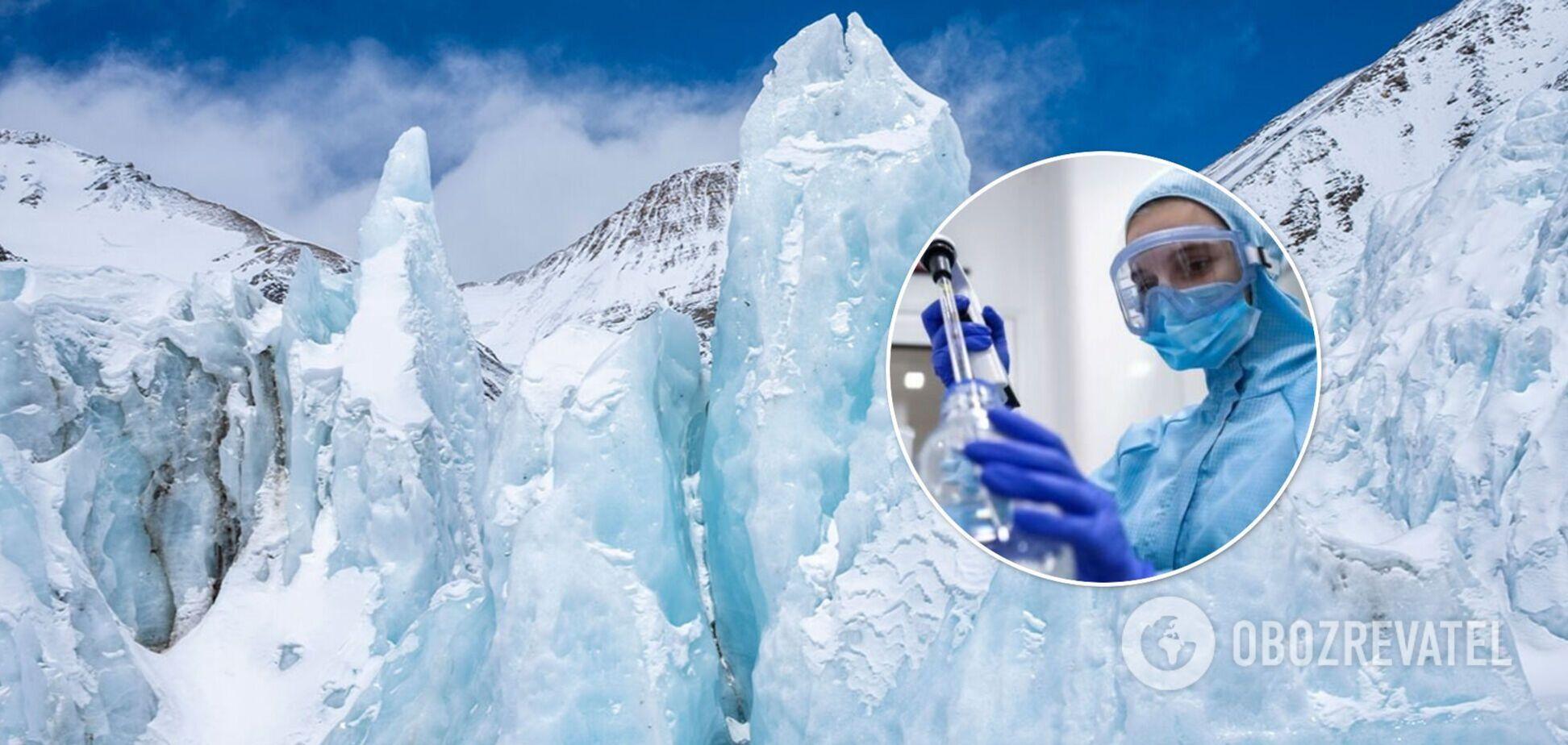Ученые нашли в тибетском леднике неизвестные науке вирусы: они способны выжить в экстремальных условиях