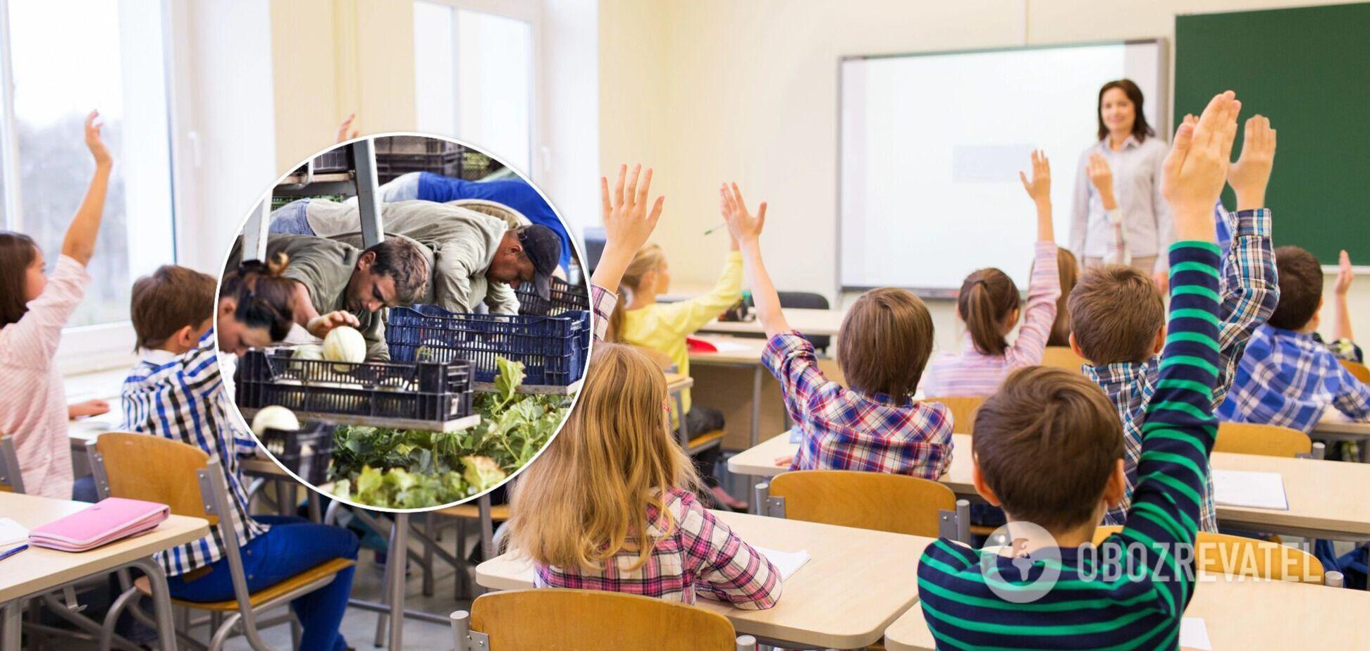 Сколько зарабатывают учителя на заработках