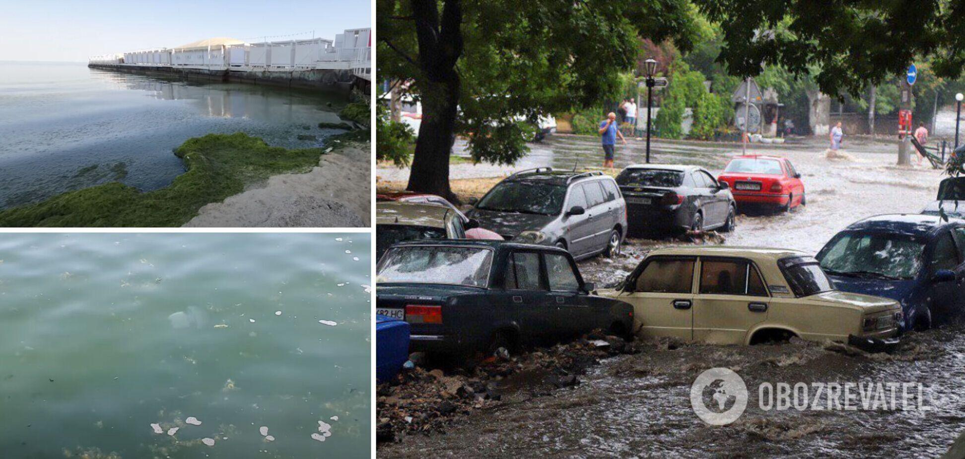 Море в Одессе превратилось в помои